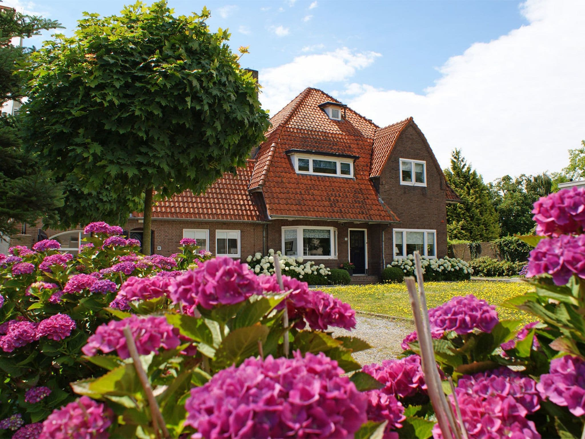 Holland | Noord-Brabant | Holiday home Villa Golf en Brabant 16p | all year | ExteriorSummer