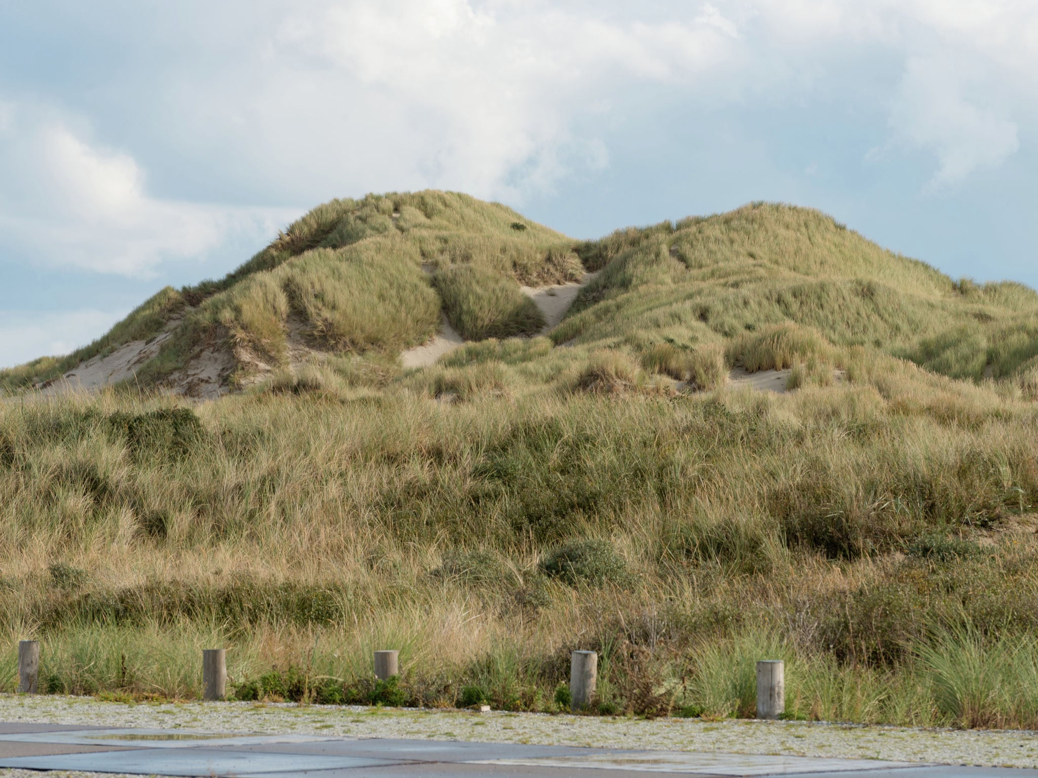 Holland | Wad Islands | Holiday home Duinboerderij | all year | AreaSummer5KM