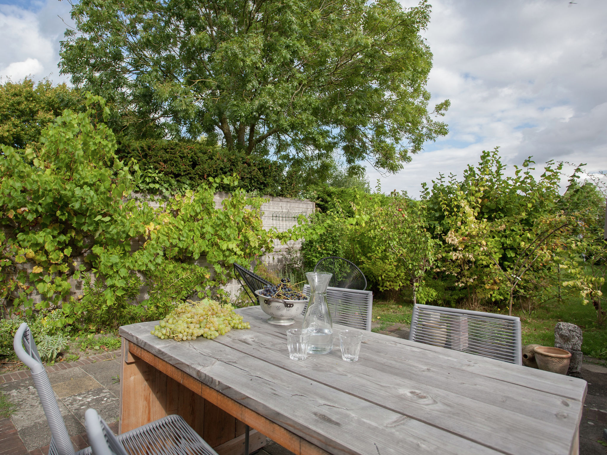 Holland | Zeeland | Holiday home 't Schuytvlotje | all year | TerraceBalcony