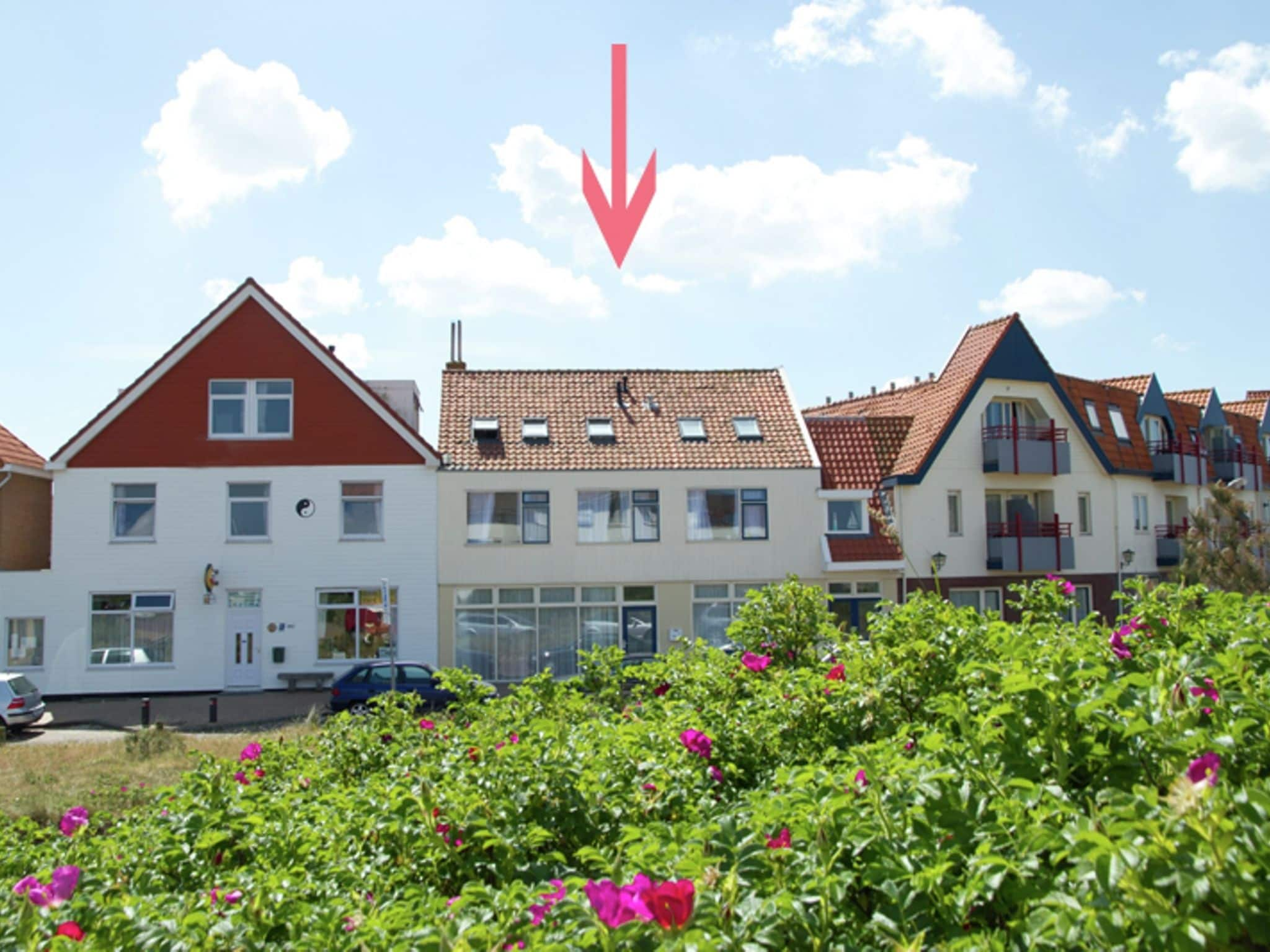 Holland | North Sea Coast North | Holiday home Near the Sea II | all year | ExteriorSummer