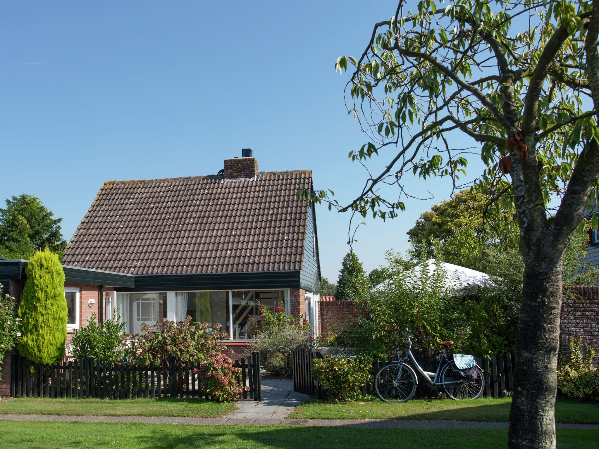 Holland | North Sea Coast South | Holiday home Zeelicht | all year | ExteriorSummer