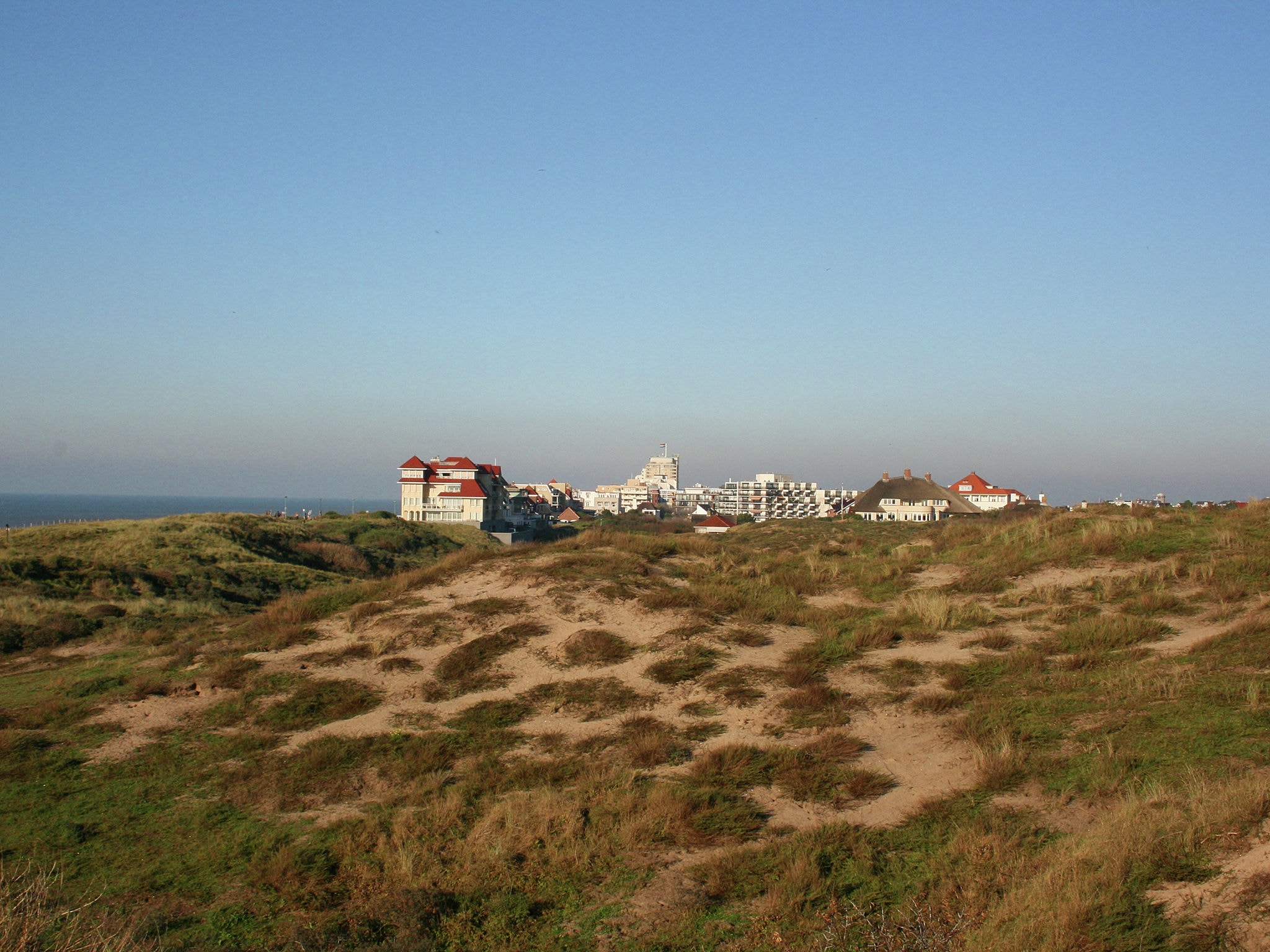 Holland | North Sea Coast South | Holiday home Buiten Schot | all year | ViewSummer