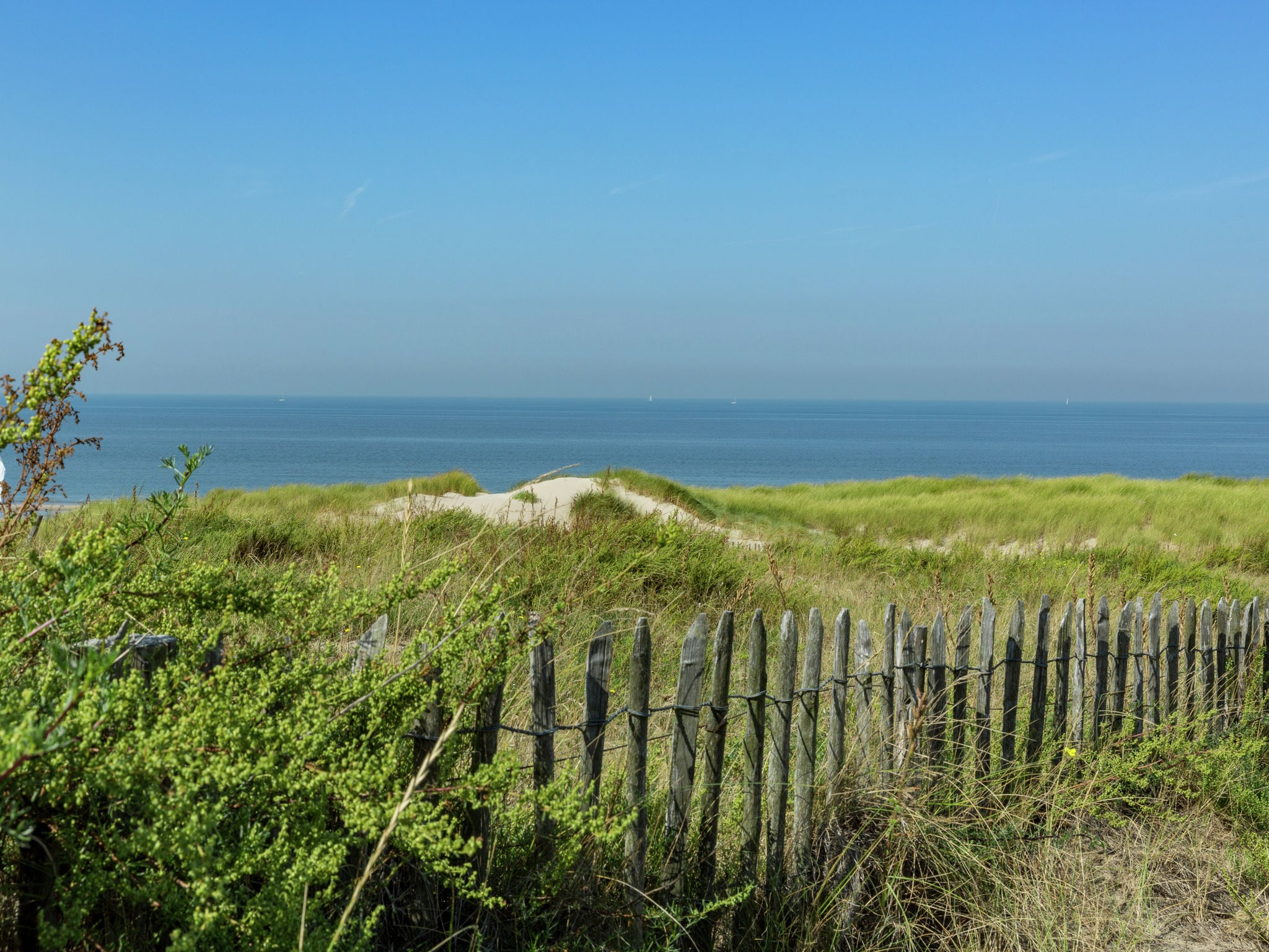 Holland | North Sea Coast South | Holiday home Buiten Schot | all year | AreaSummer1KM