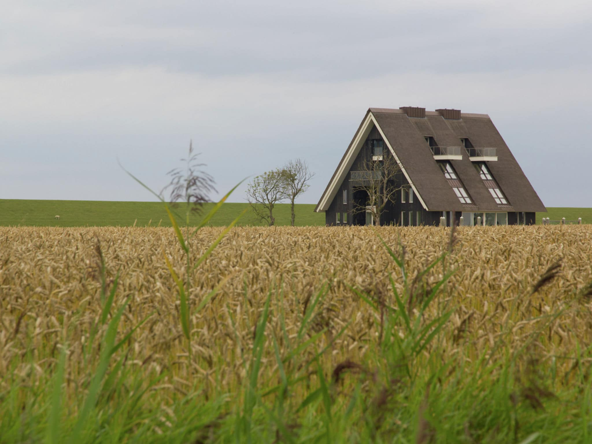 Holland | Friesland | Holiday home Landhuis Wad Anders | all year | ExteriorWinter