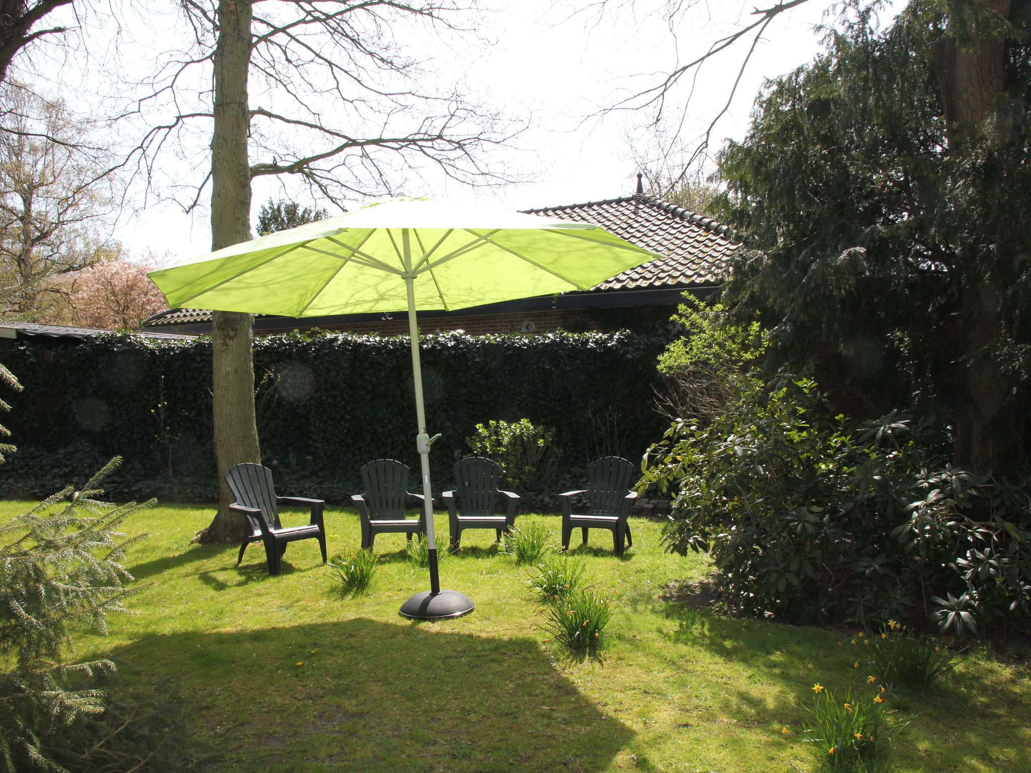 Holland | North Sea Coast North | Holiday home Warm Bergen | all year | GardenSummer