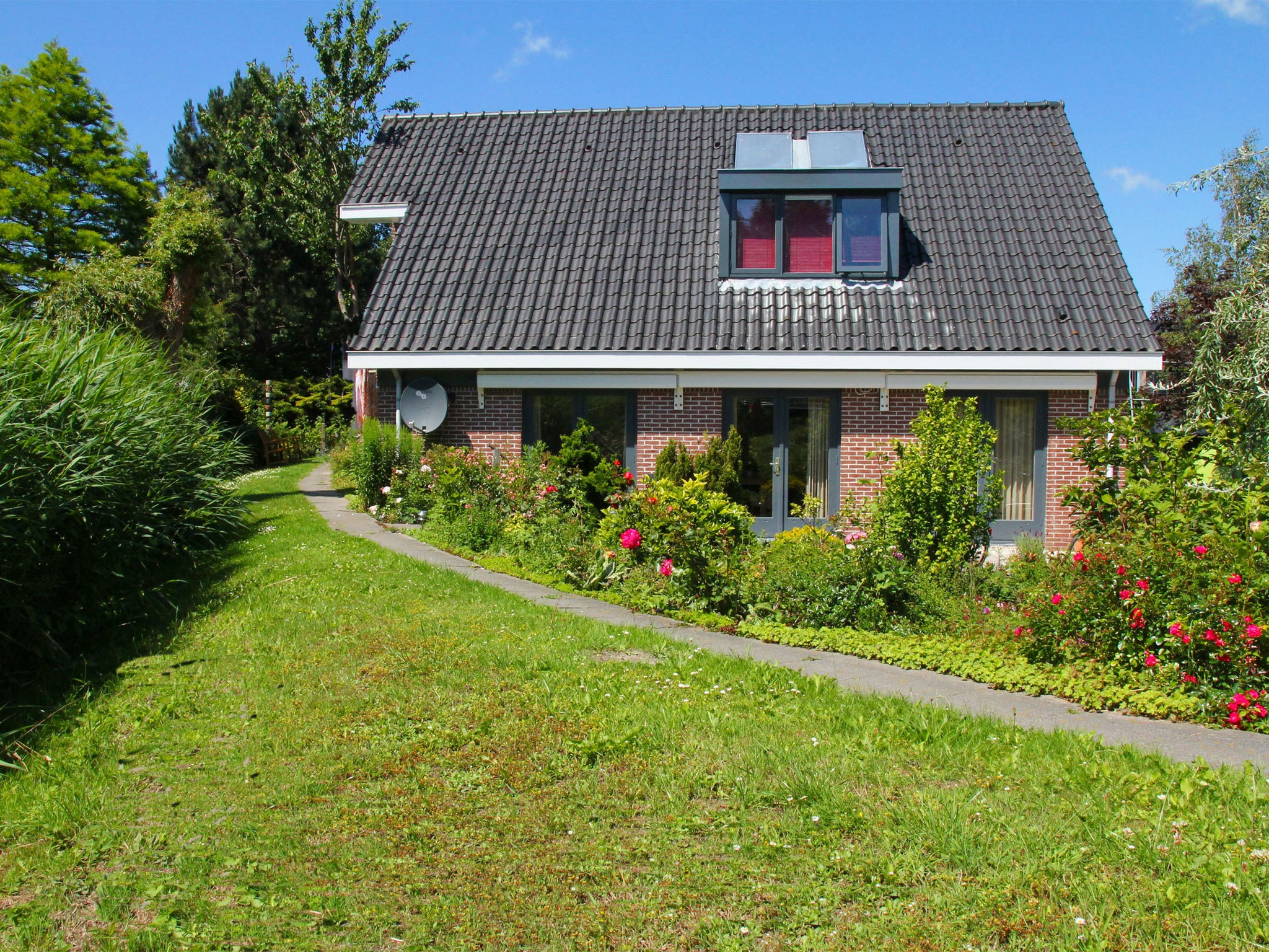 Holland | North Sea Coast North | Holiday home Groot Framboos | all year | ExteriorSummer