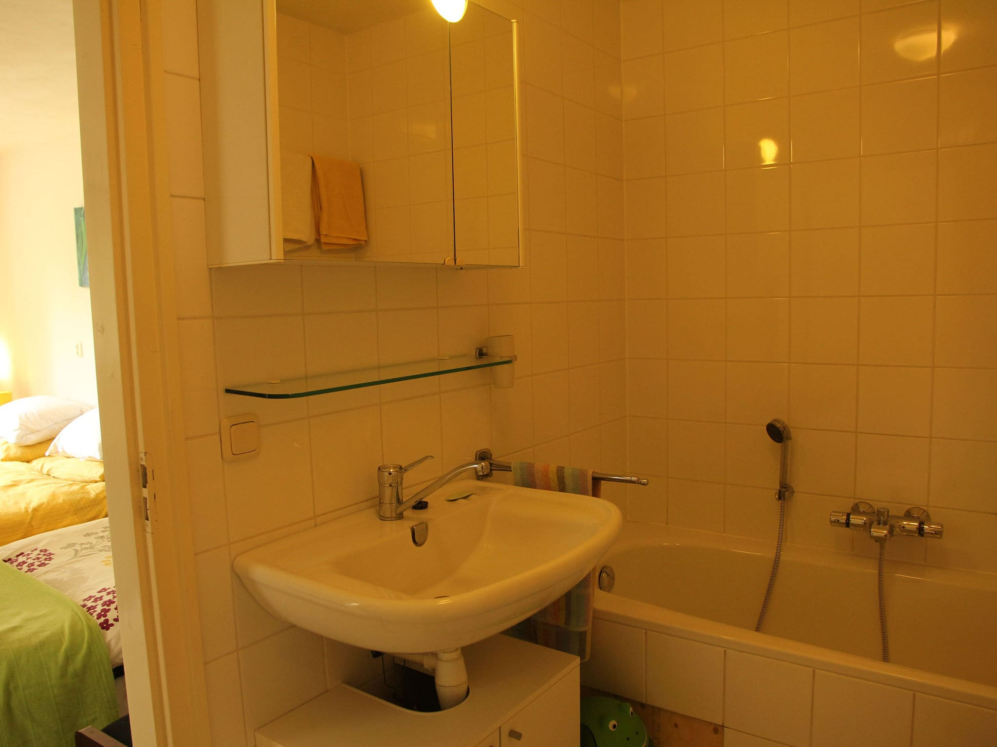 Holland | North Sea Coast North | Holiday home Groot Framboos | all year | BathRoom