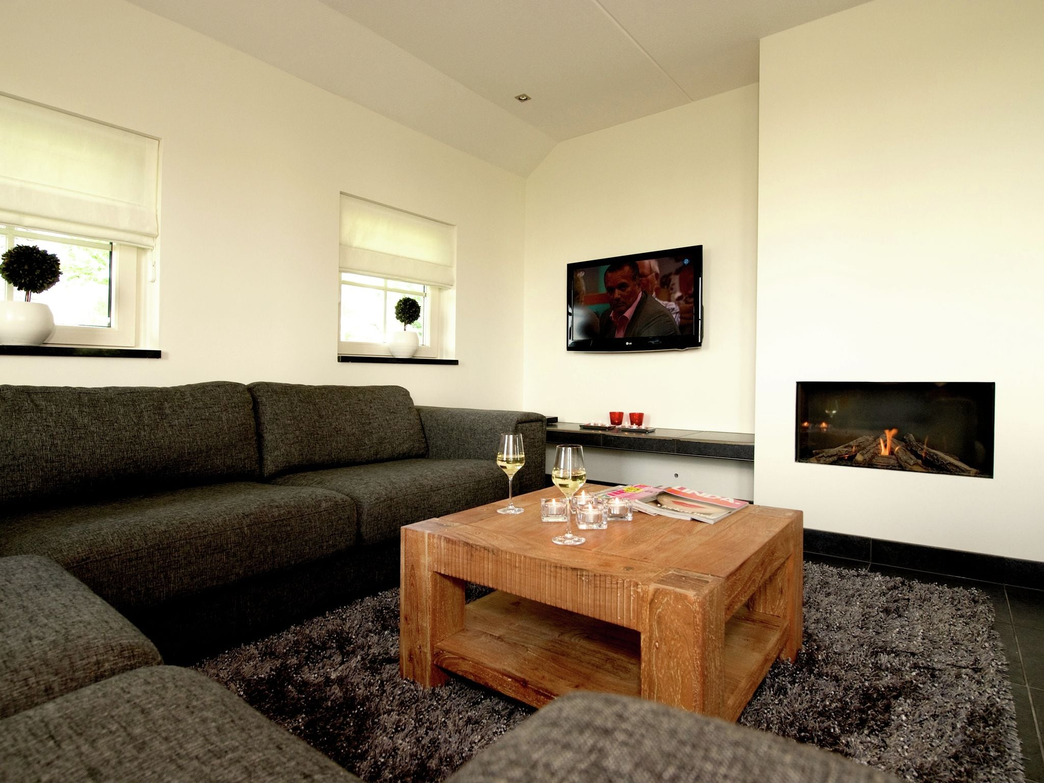 Holland | Overijssel | Holiday home Hof van Salland - Beukelaer Wellness 5 persoons | all year | LivingRoom