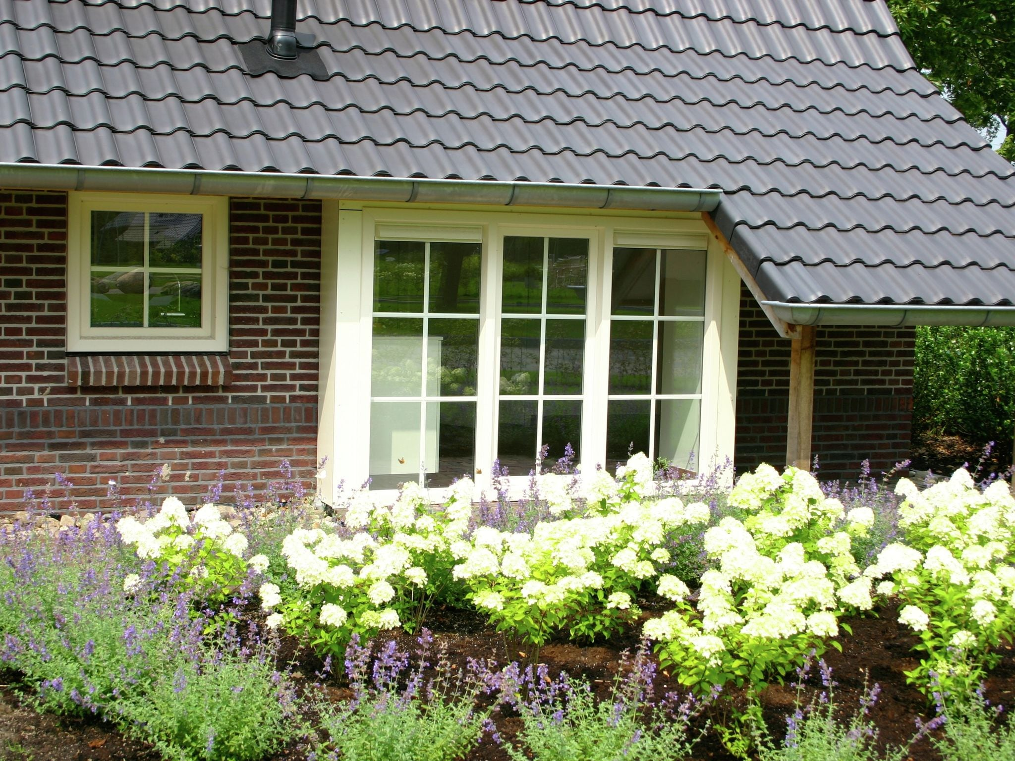 Holland | Overijssel | Holiday home Hof van Salland - Beukelaer Wellness 5 persoons | all year | GardenSummer