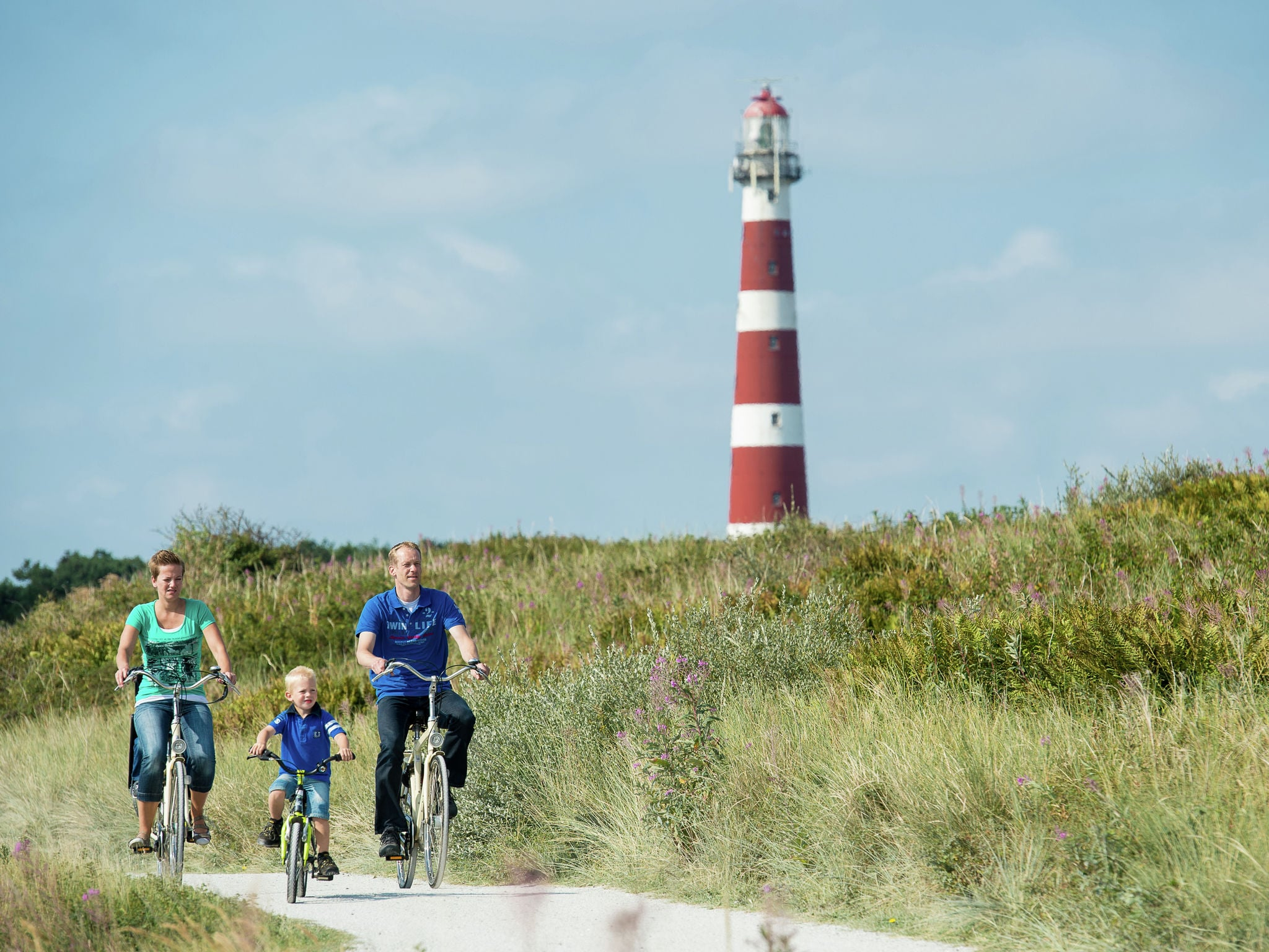Holland | Wad Islands | Holiday home Boomhiemke - Strandjutter 4-pers | all year | AreaSummer5KM