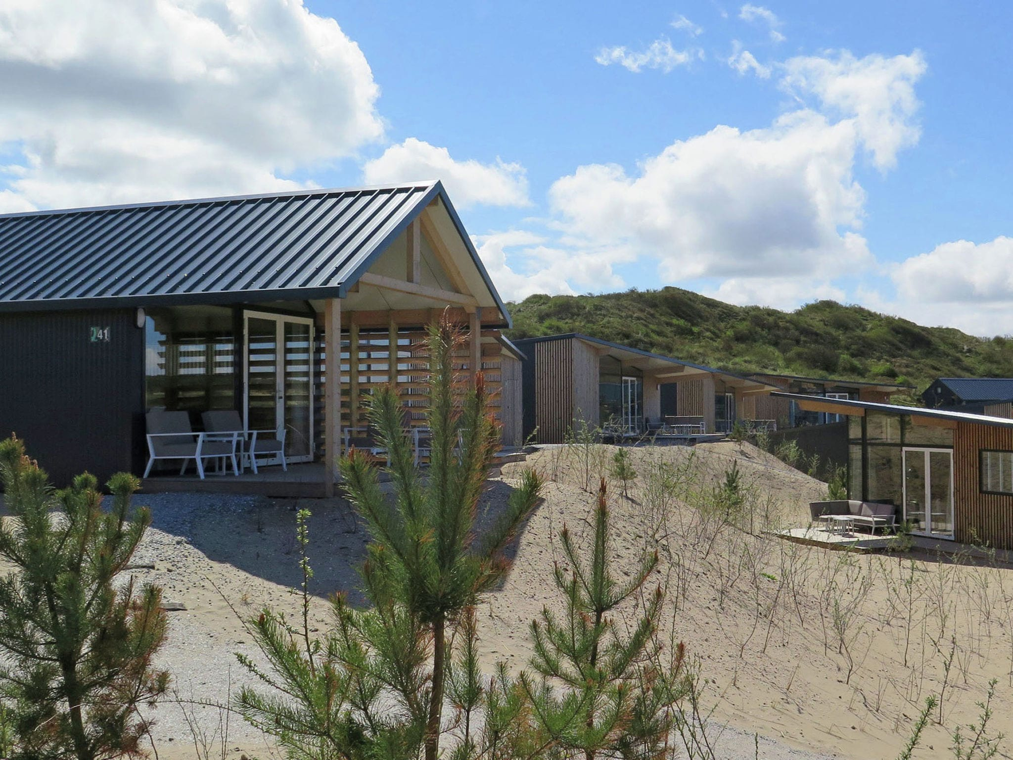 Holland | North Sea Coast North | Holiday home Sea Lodge Family met de hond | all year | ViewSummer