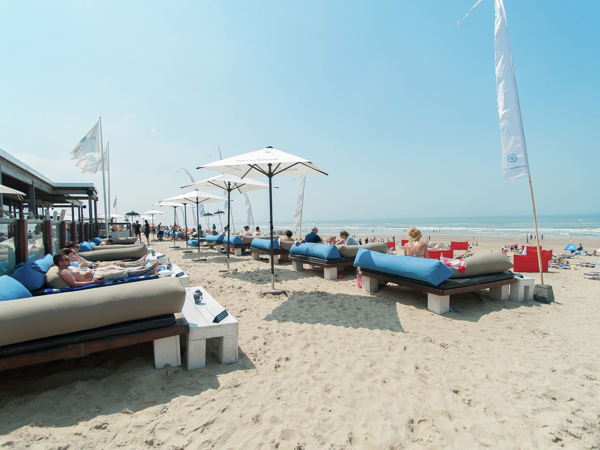 Holland | North Sea Coast North | Holiday home Sea Lodge Family met de hond | all year | AreaSummer5KM