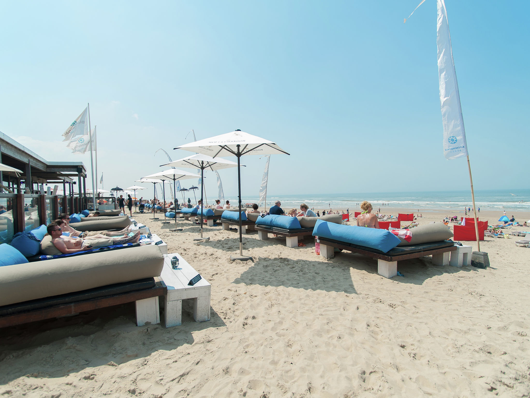 Holland | North Sea Coast North | Holiday home Sea Lodge Bloemendaal Special | all year | AreaSummer5KM