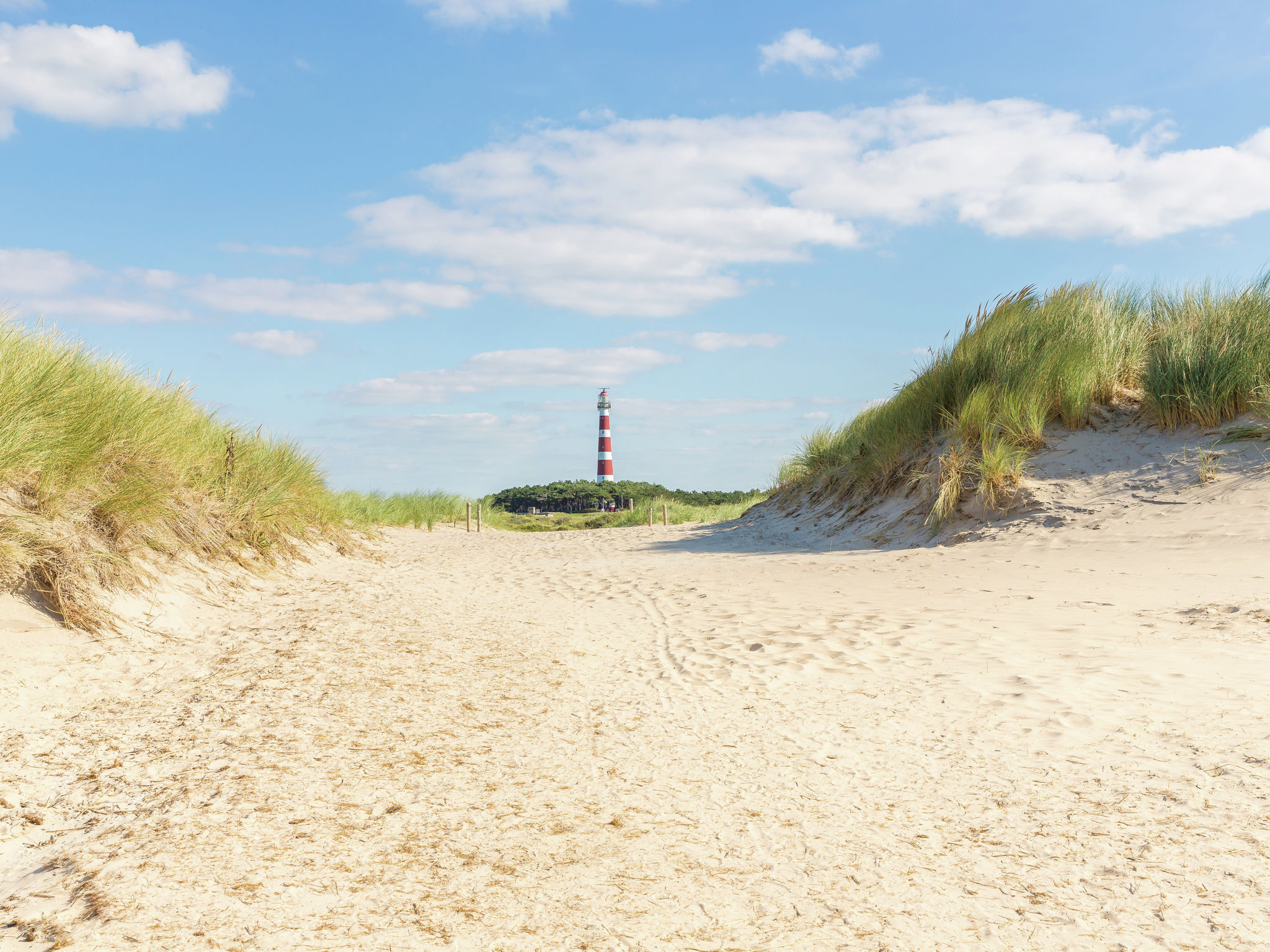 Holland | Wad Islands | Holiday home Boomhiemke - Duinlodge | all year | AreaSummer5KM