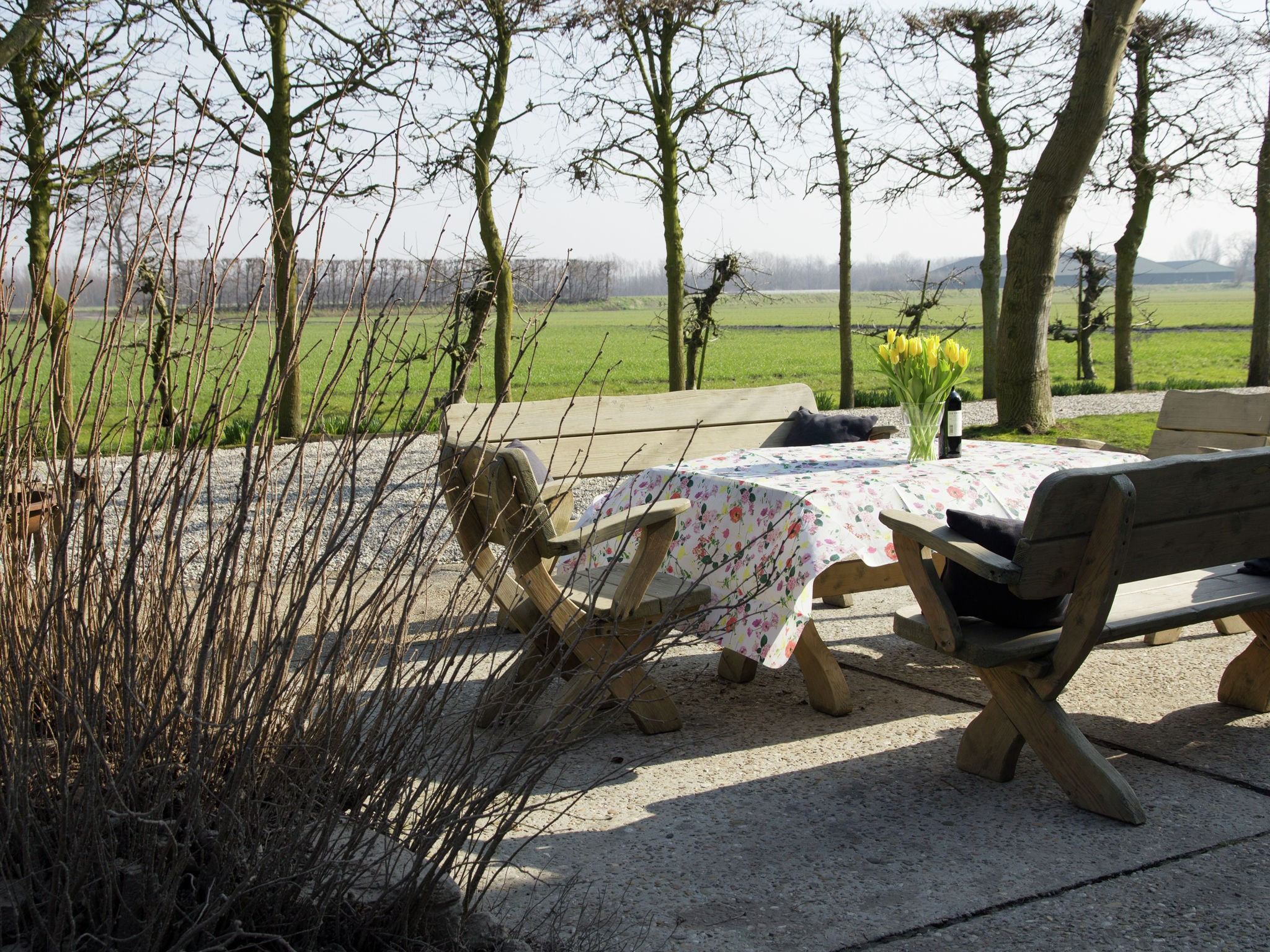 Holland | Zeeland | Holiday home Bronzigt | all year | TerraceBalcony