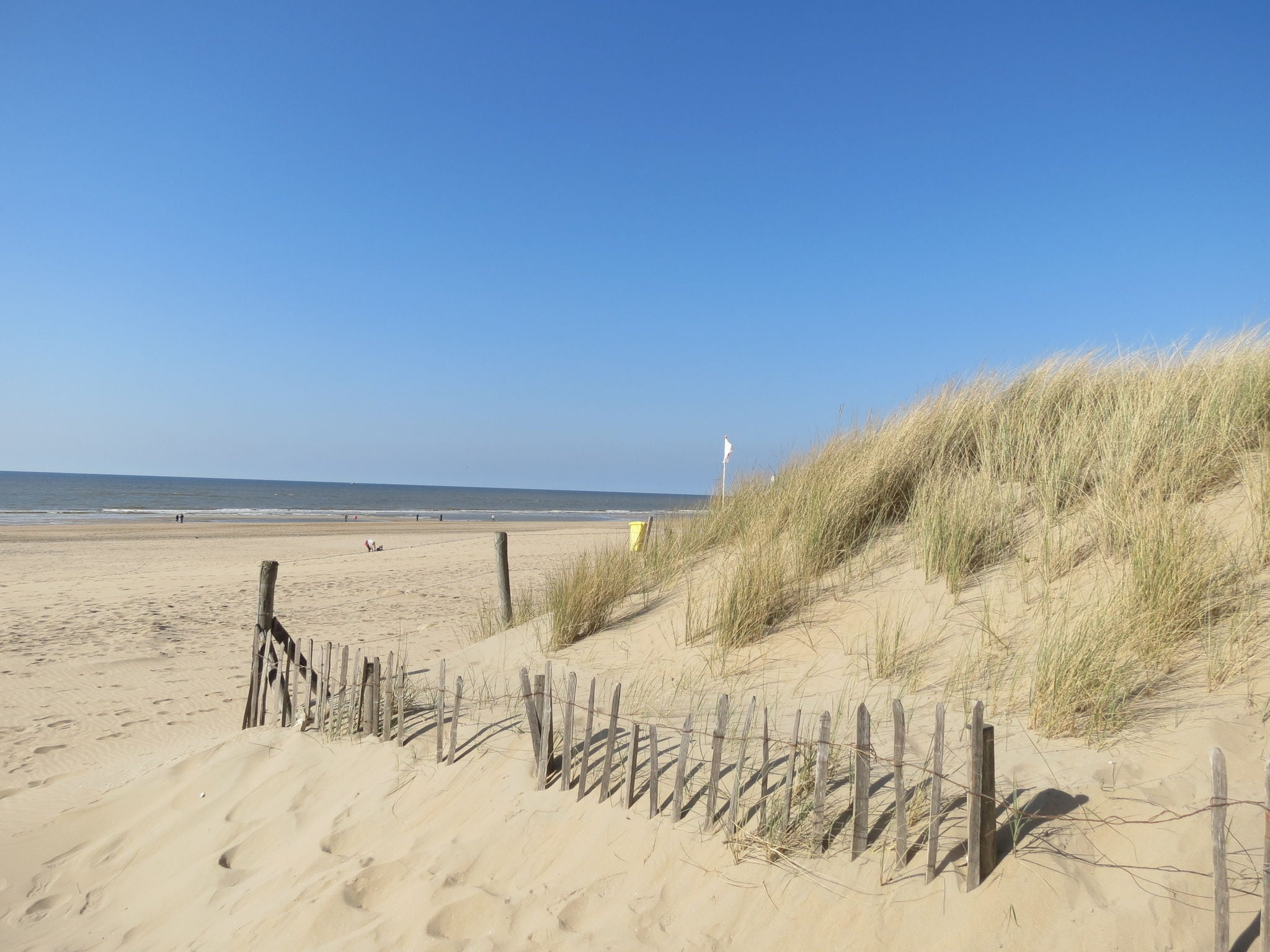 Holland | North Sea Coast South | Holiday home Strandlopertje | all year | AreaSummer5KM