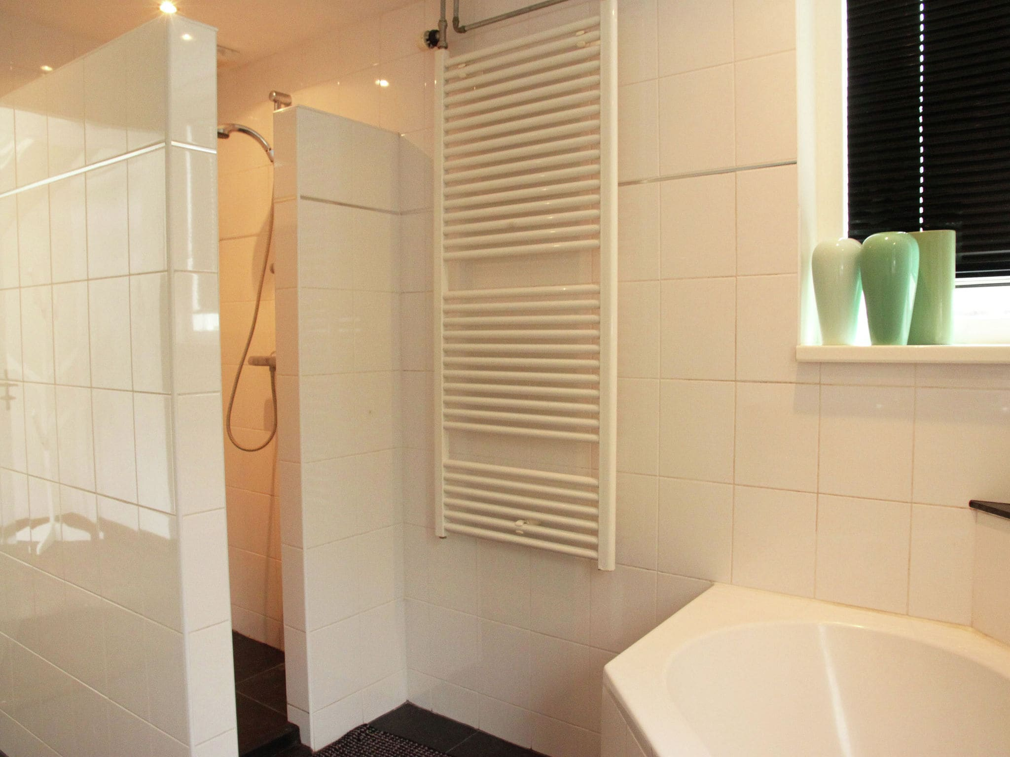 Holland | Friesland | Holiday home Bos & Natuur | all year | BathRoom