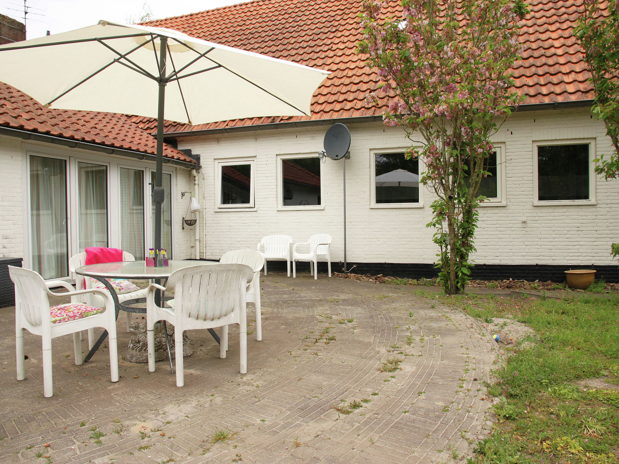 Holland | Friesland | Holiday home Bos & Natuur | all year | GardenSummer