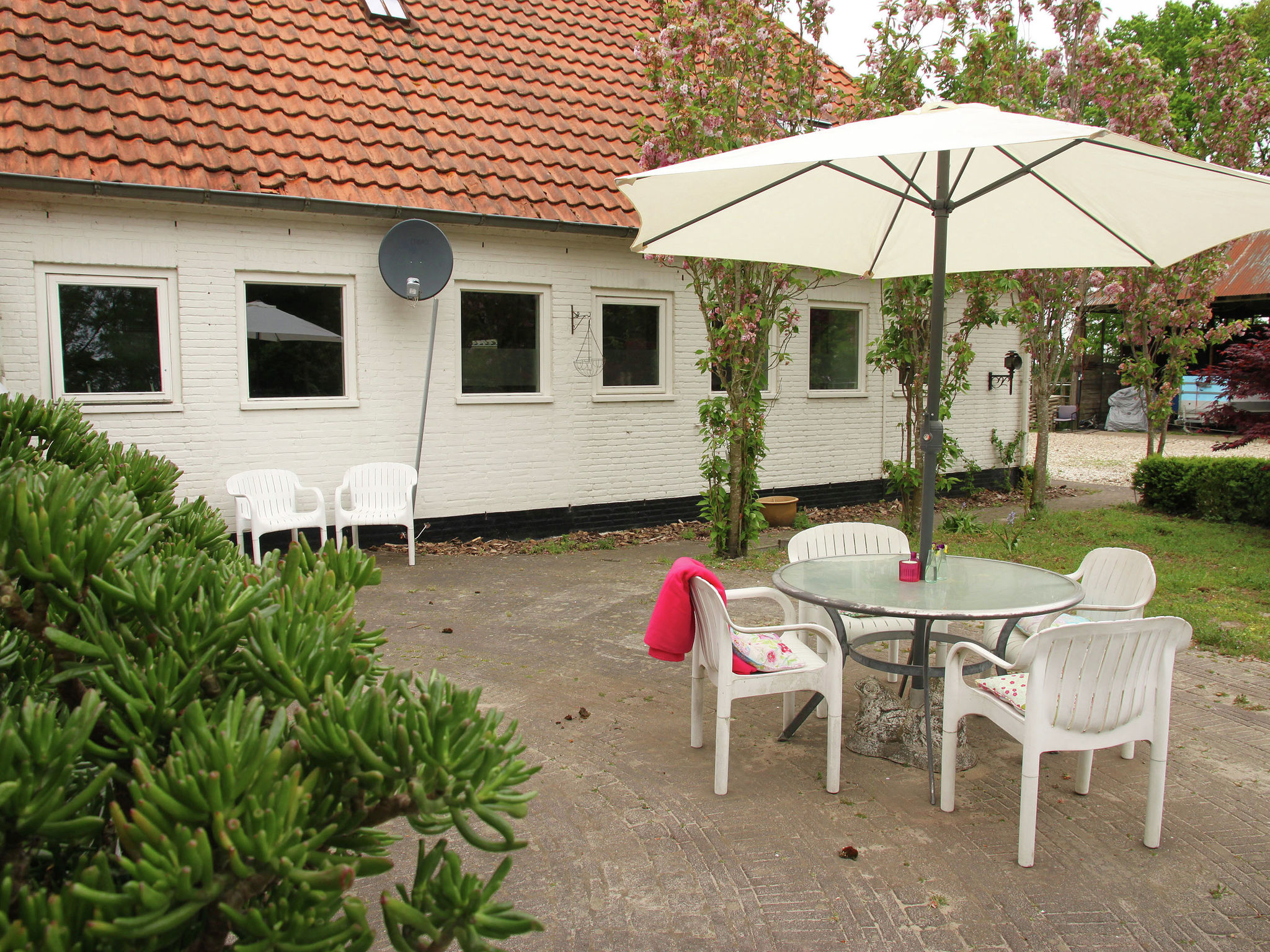 Holland | Friesland | Holiday home Bos & Natuur | all year | TerraceBalcony