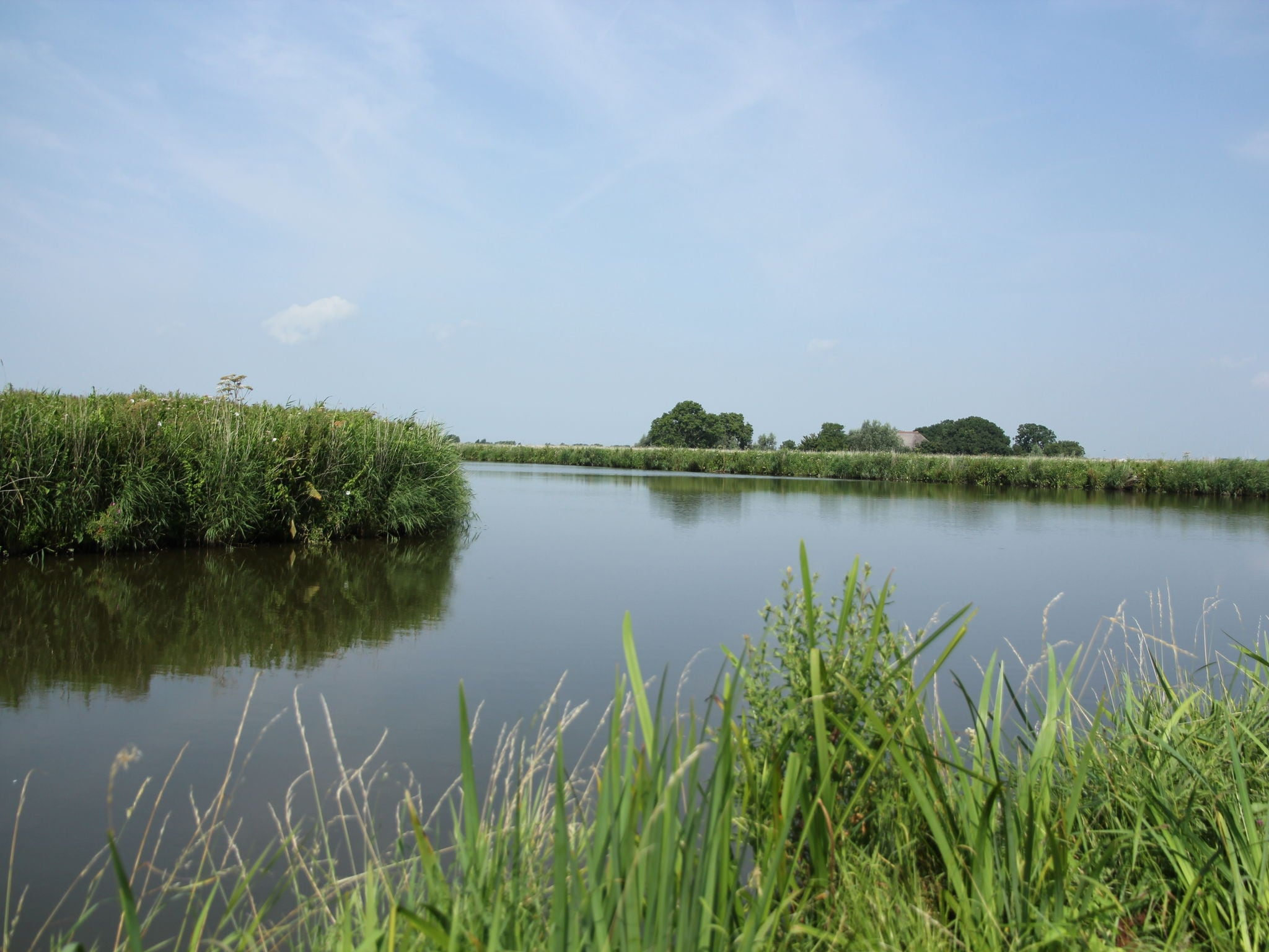 Holland | Friesland | Holiday home Bos & Natuur | all year | AreaSummer5KM
