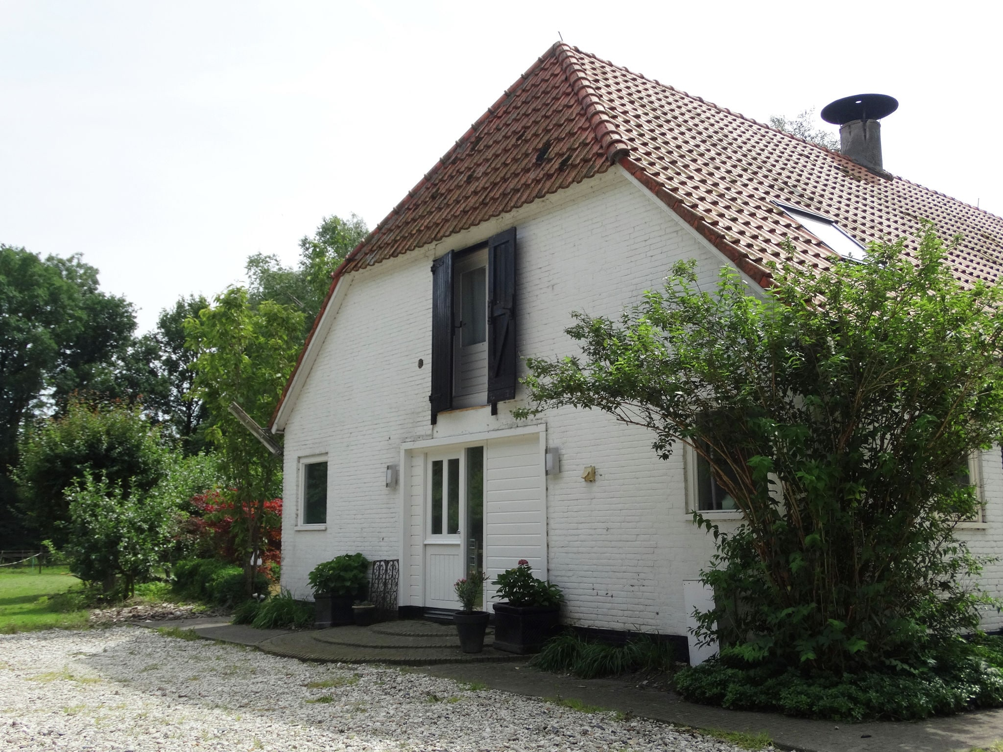 Holland | Friesland | Holiday home Bos & Natuur | all year | ExteriorSummer