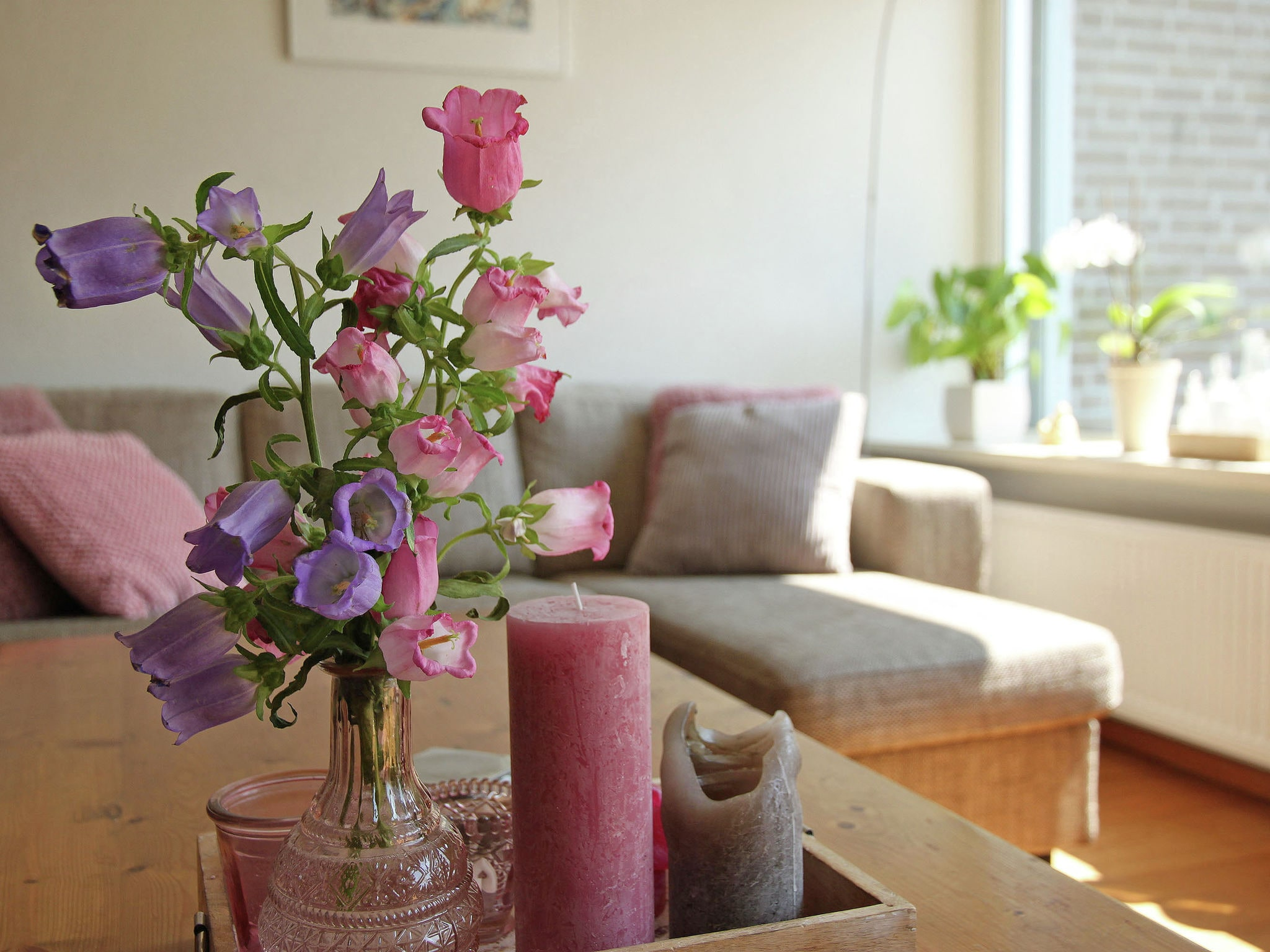 Holland | North Sea Coast North | Holiday home Enjoy Bergen | all year | Ambiance