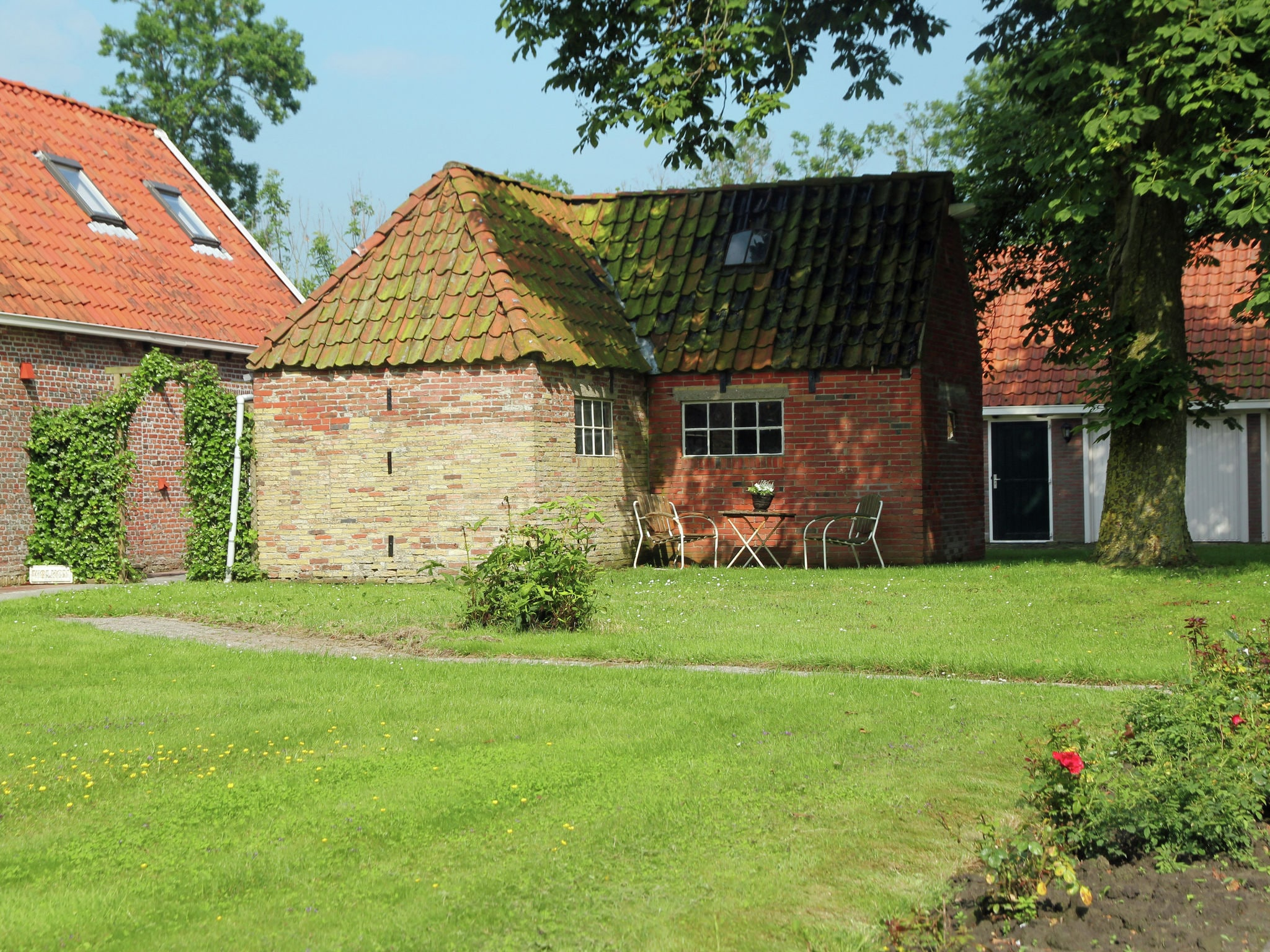 Holland | Friesland | Holiday home Hielsema | all year | TerraceBalcony
