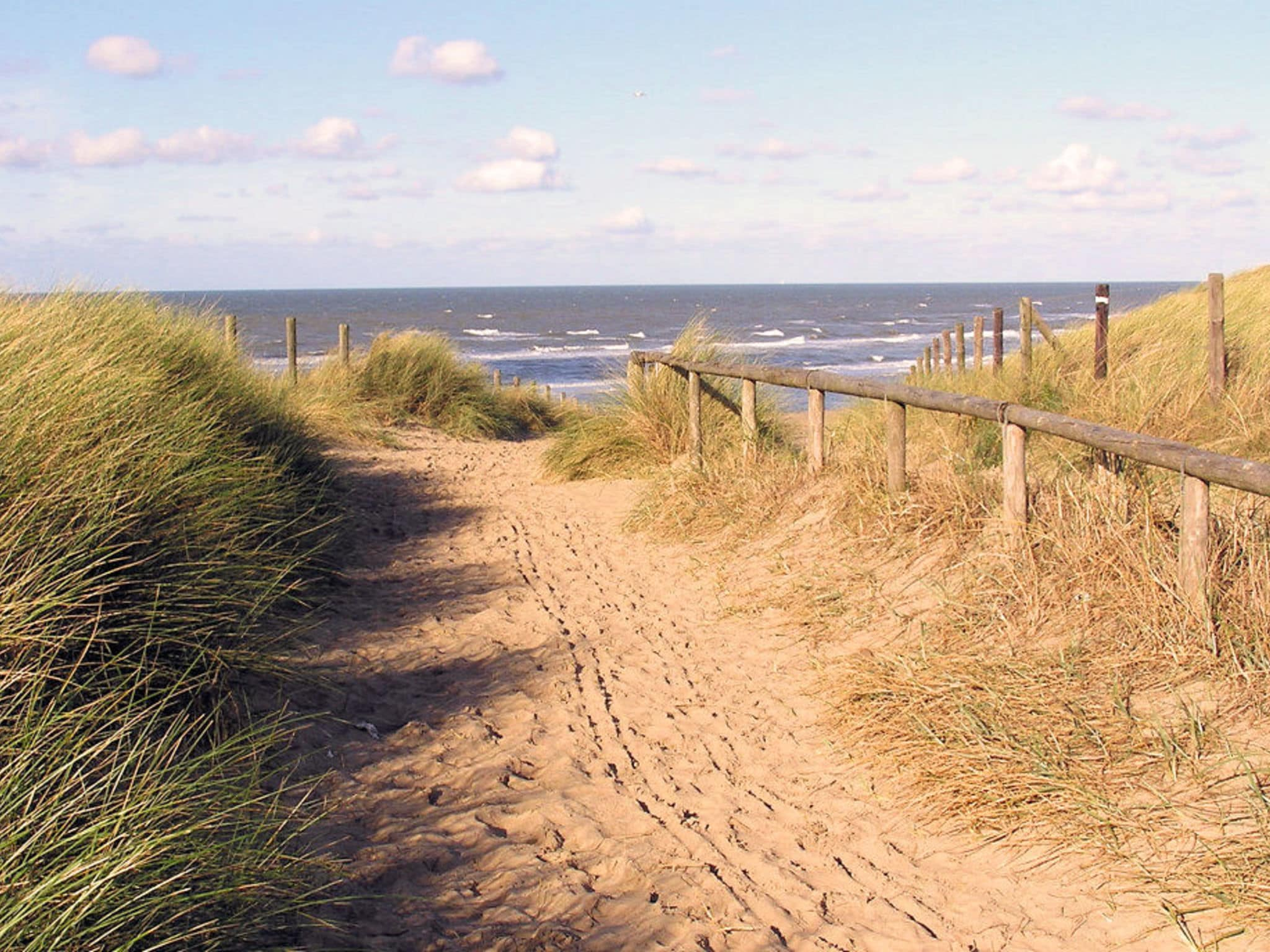 Holland | North Sea Coast South | Holiday home Searose | all year | AreaSummer1KM