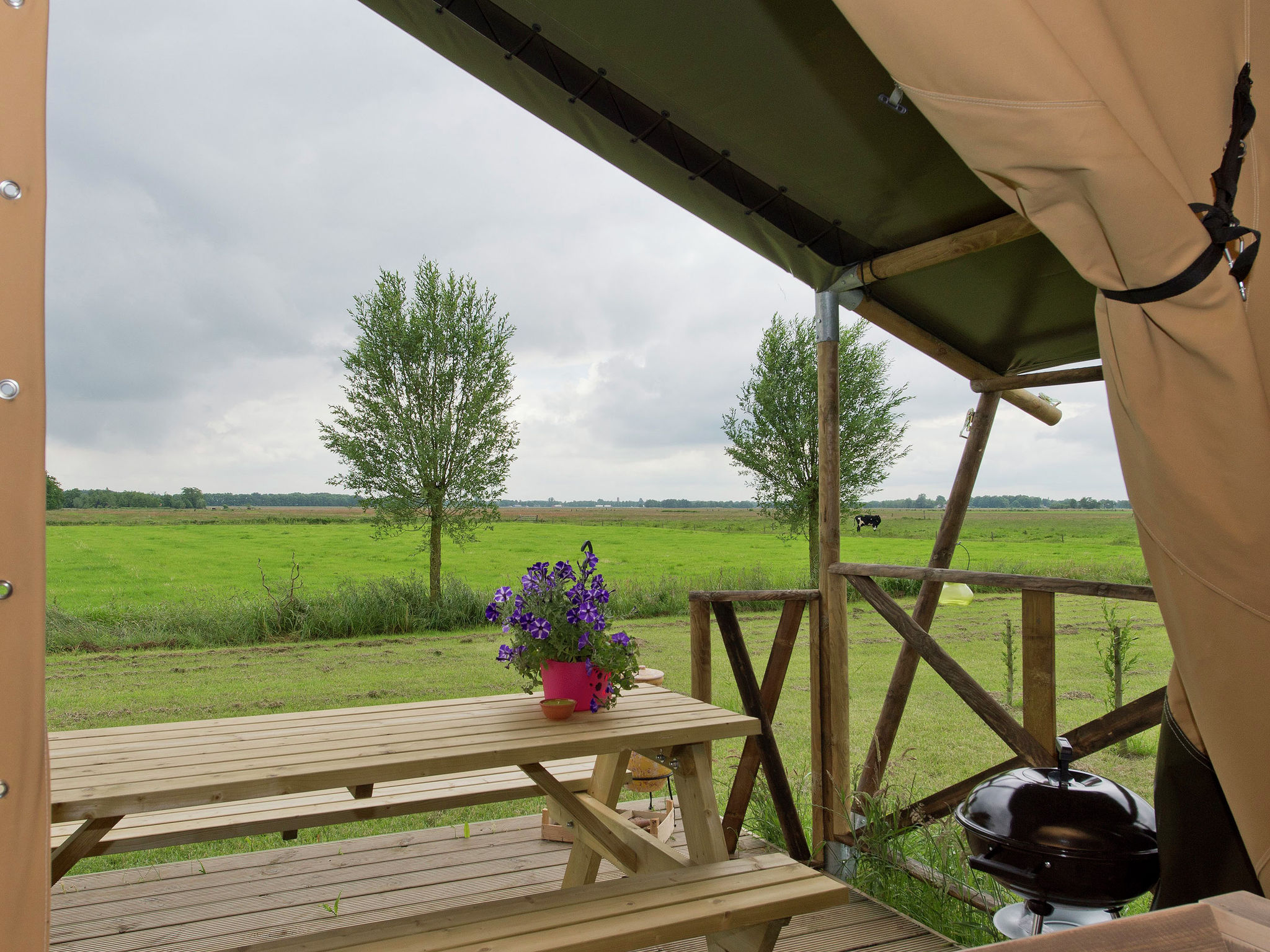 Holland | Groningen | Holiday home Groninger Lodge II | all year | ViewSummer