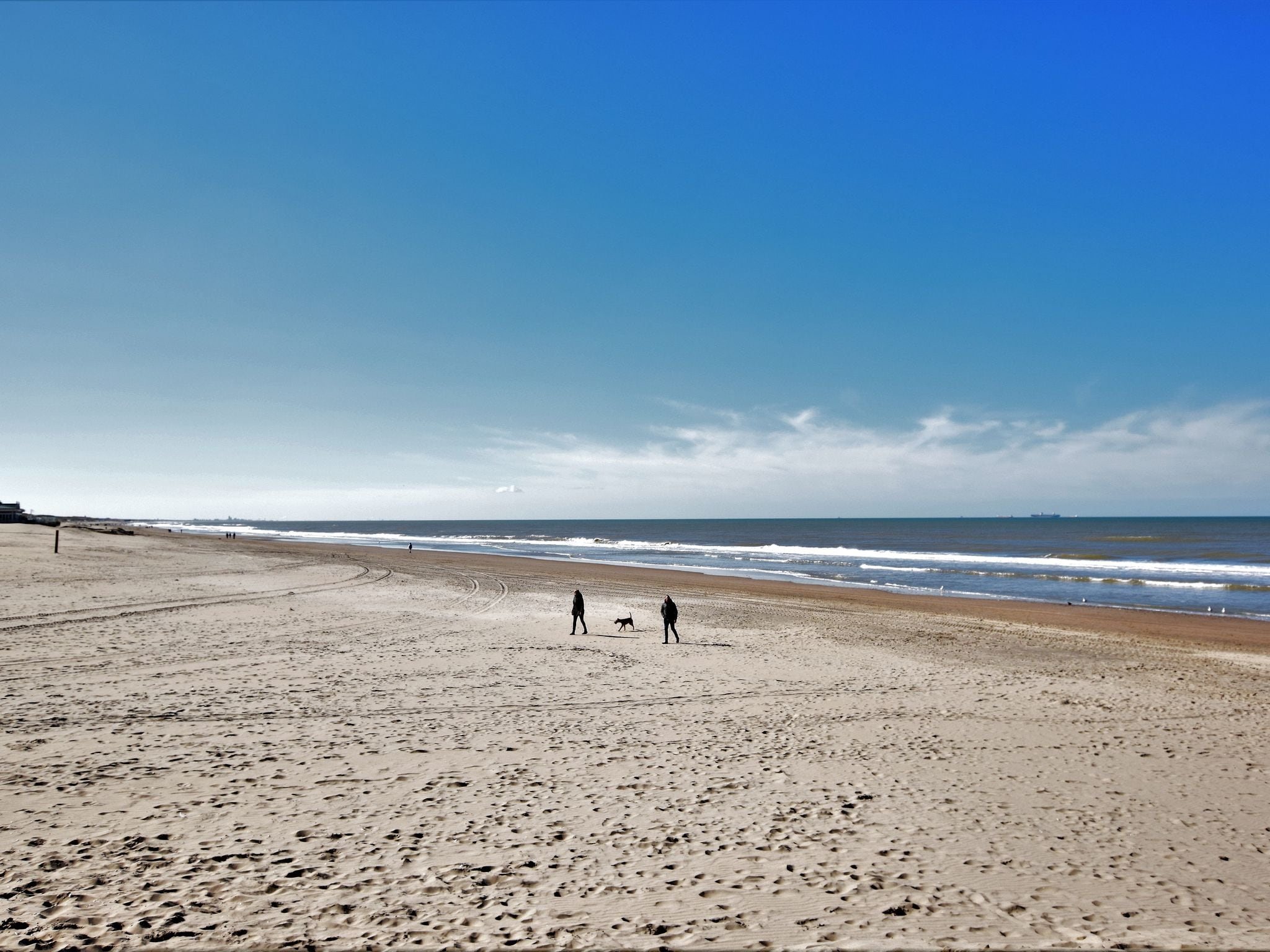 Holland | North Sea Coast South | Holiday home Duinvilla Noordwijk | all year | AreaSummer1KM
