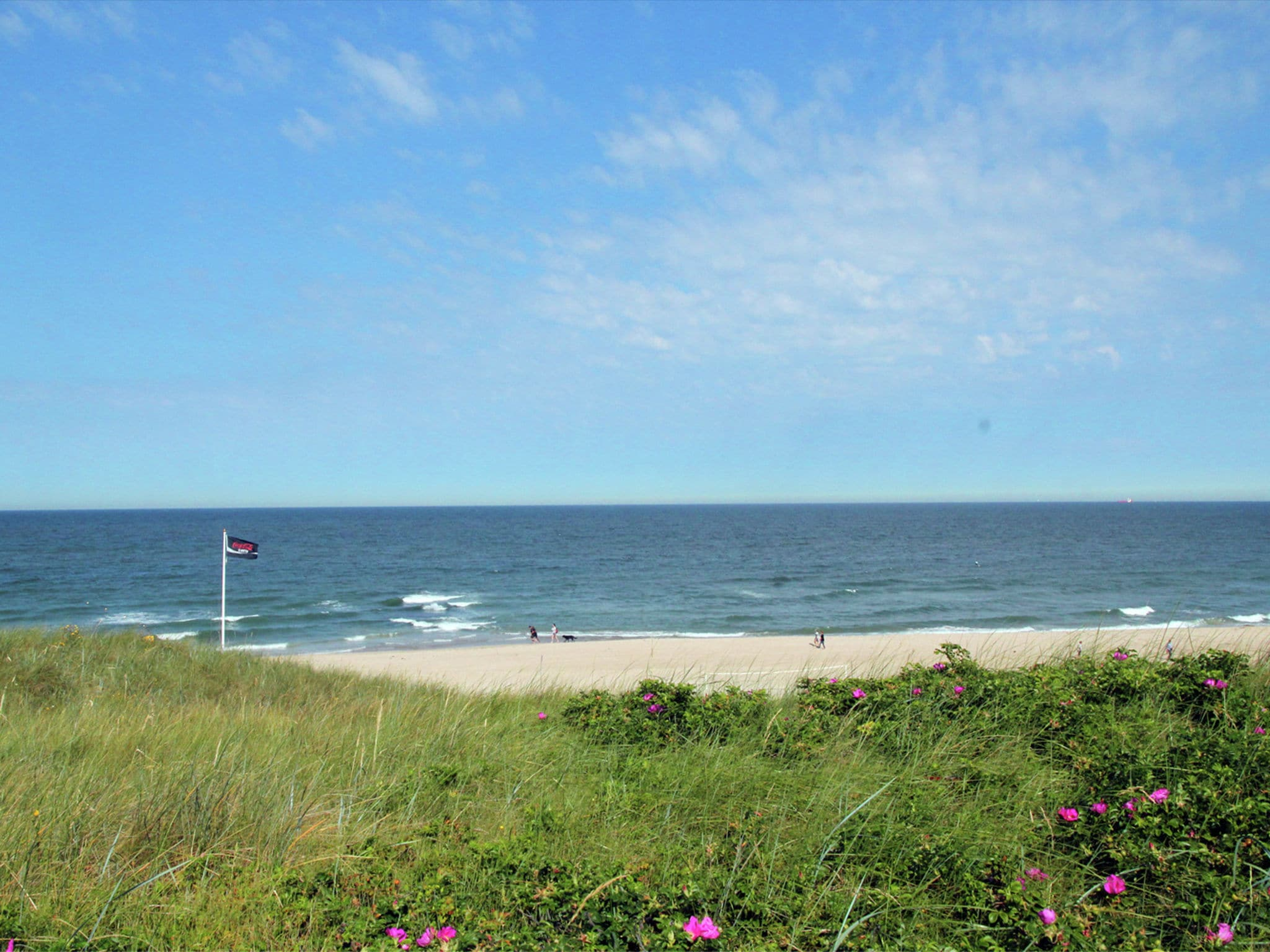 Holland | North Sea Coast North | Holiday home Zonnig Strand | all year | AreaSummer1KM
