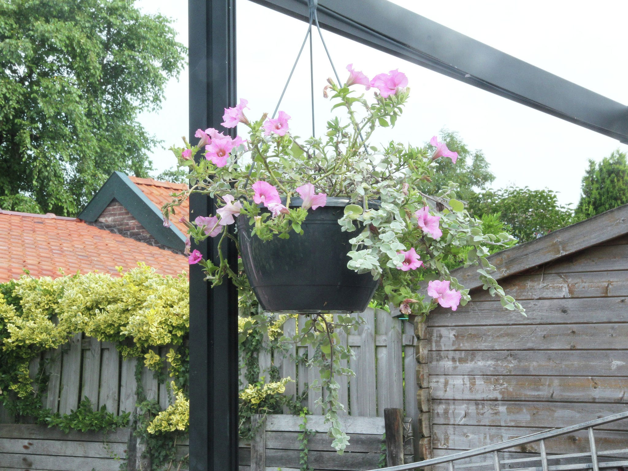 Holland | North Sea Coast North | Holiday home Thuis in Heiloo | all year | GardenSummer