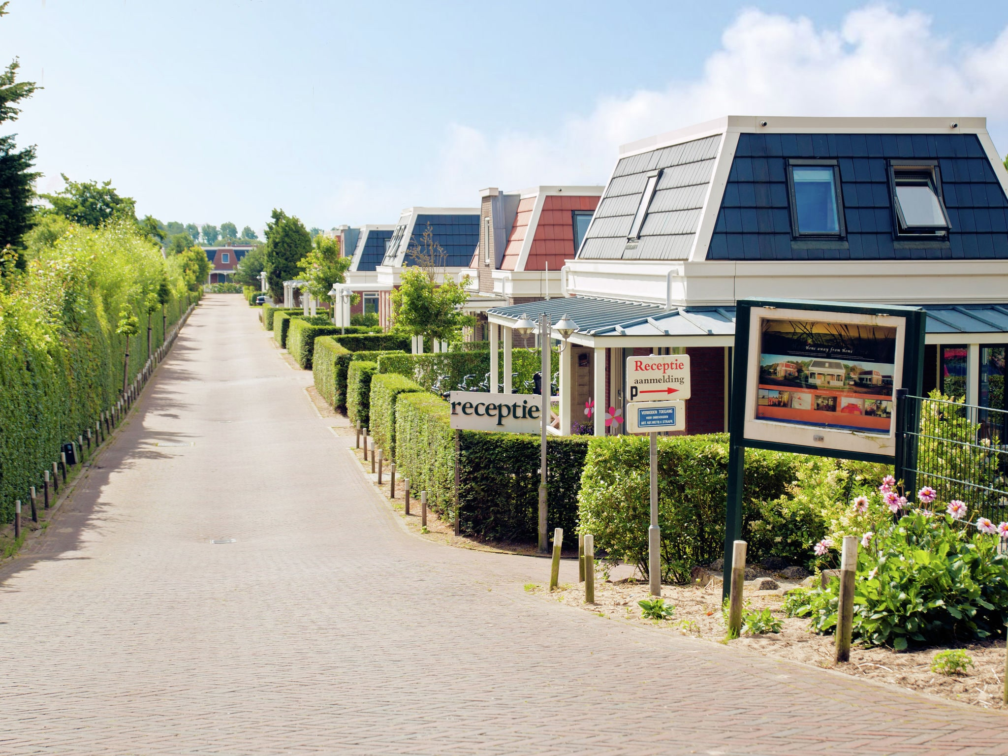 Holland | North Sea Coast South | Holiday home Bungalowparck Tulp en Zee | all year | ExteriorSummer