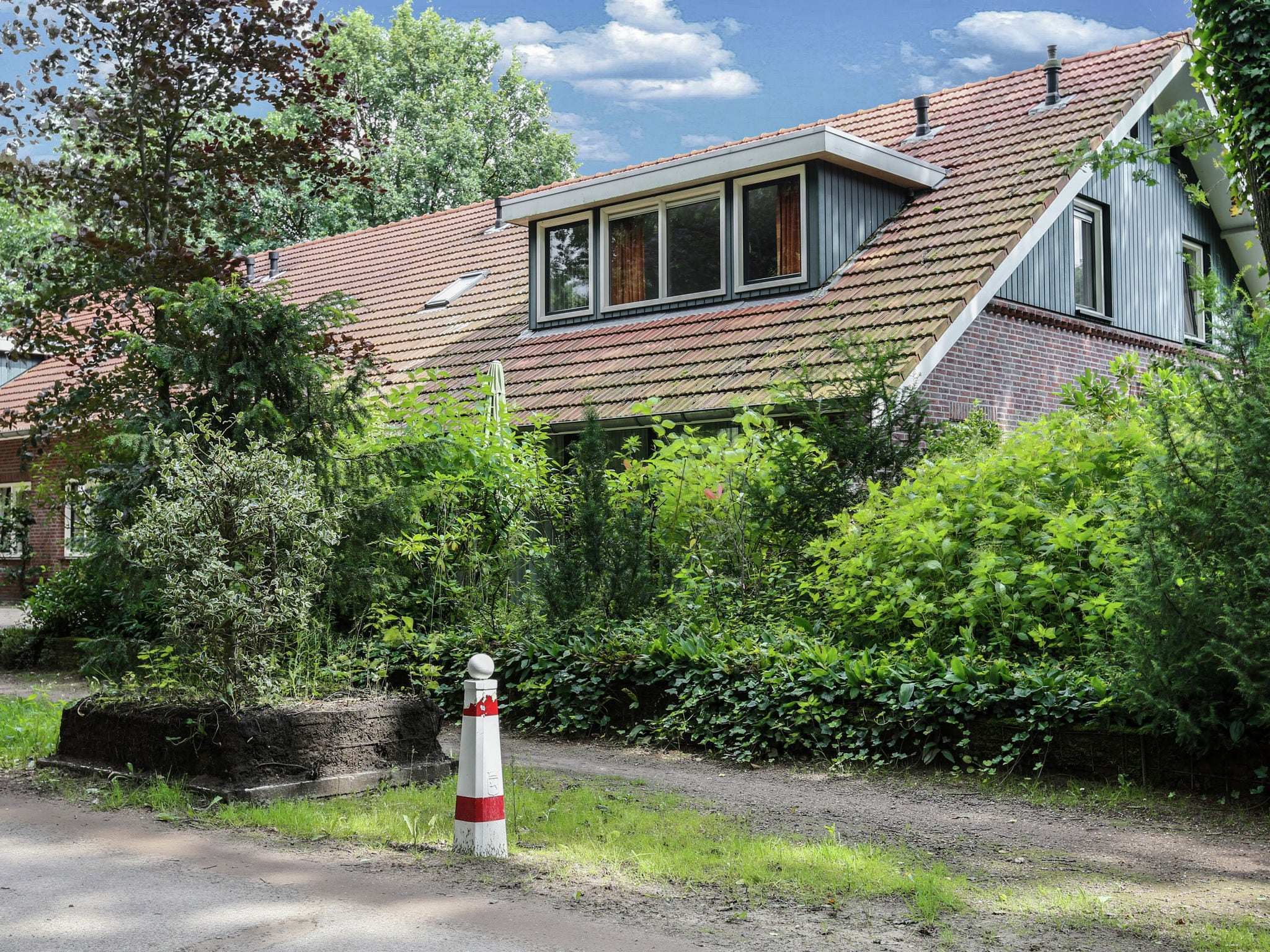 Holland | Gelderland | Holiday home In het Bos | all year | ExteriorSummer