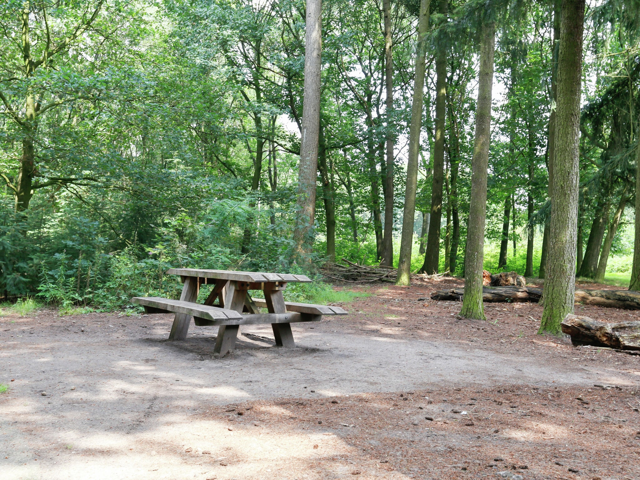 Holland | Gelderland | Holiday home In het Bos | all year | AreaSummer20KM