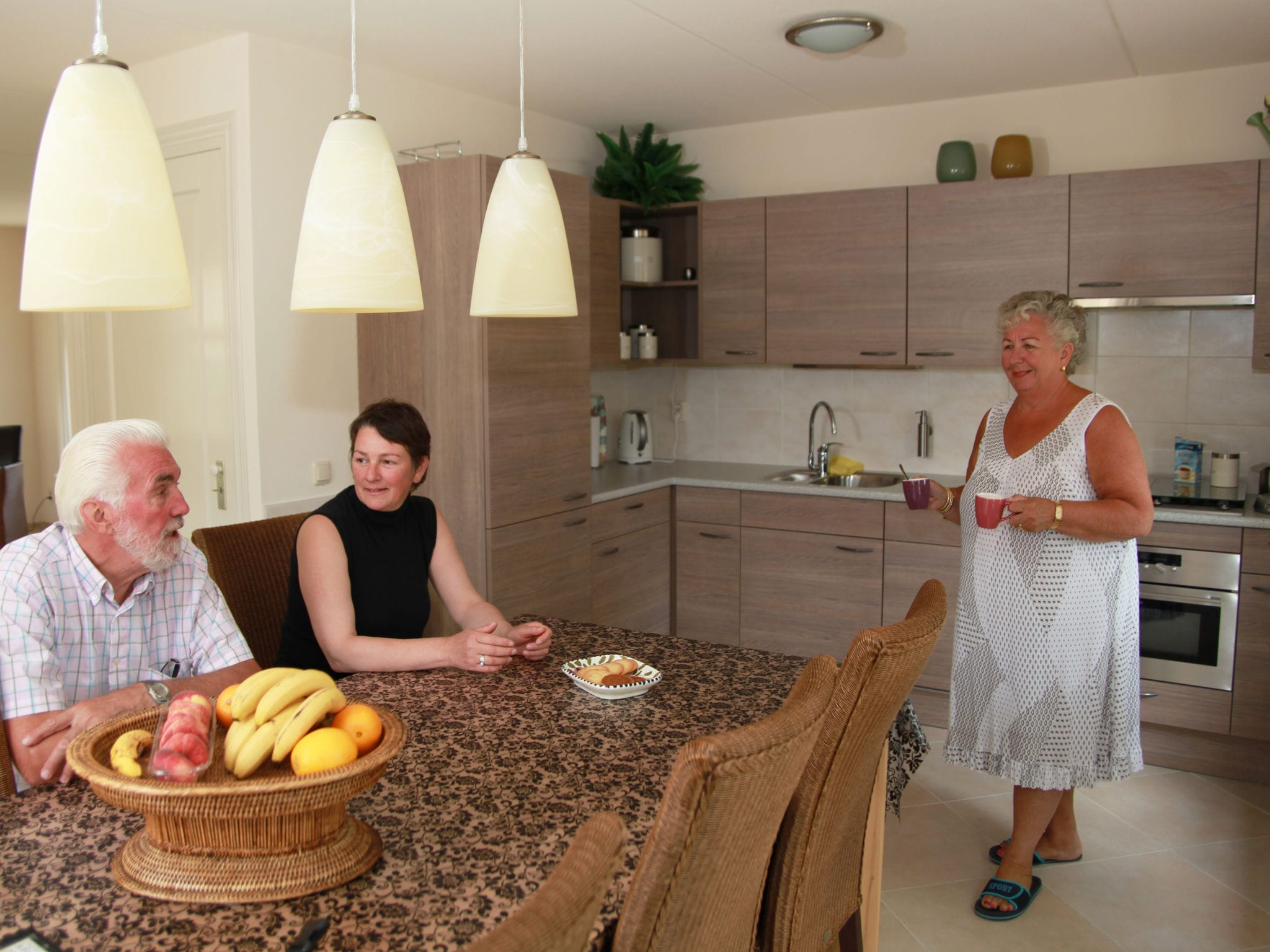 Holland | North Sea Coast North | Holiday home Recreatiepark Wiringherlant - Anno Nu 3 | all year | Kitchen