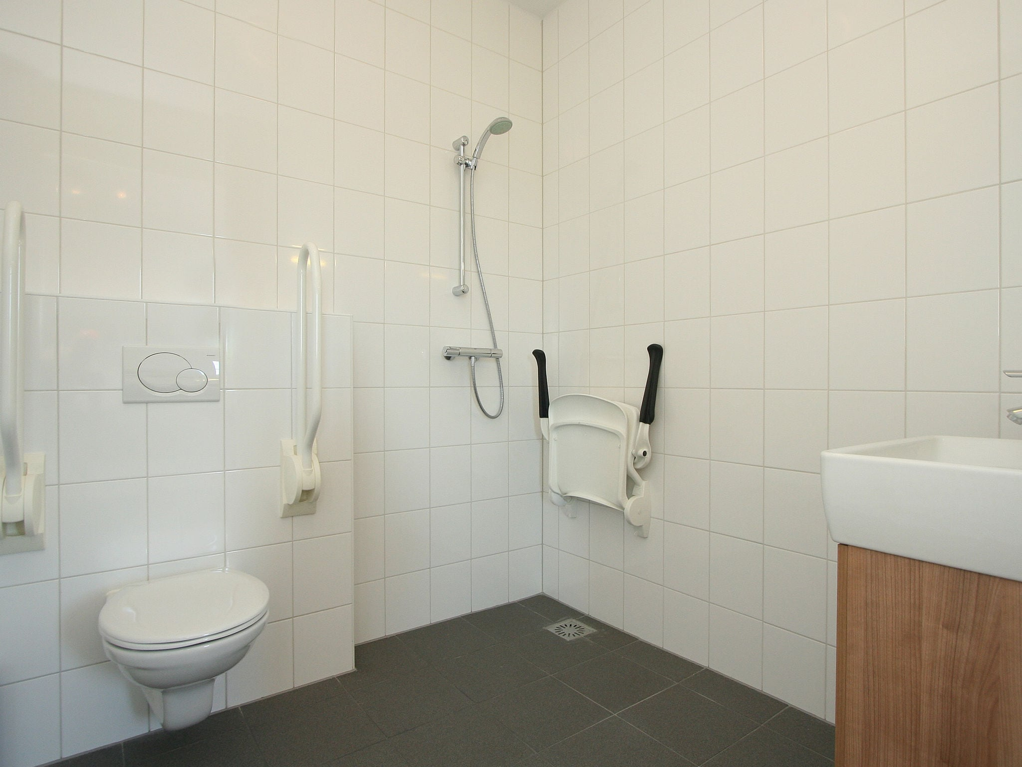 Holland | Overijssel | Holiday home Enterbrook 1 | all year | BathRoom