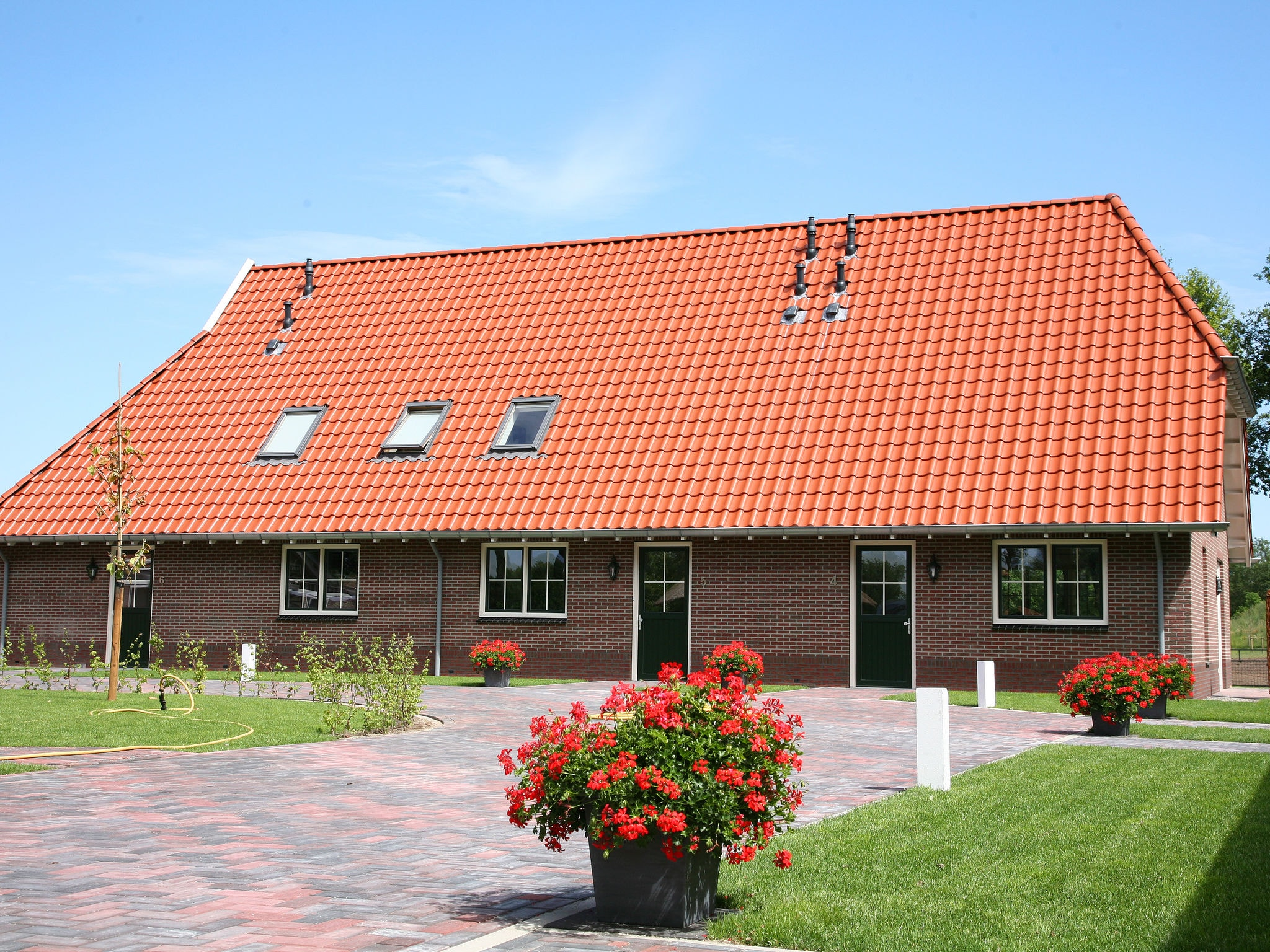 Holland | Overijssel | Holiday home Saksen | all year | ExteriorSummer