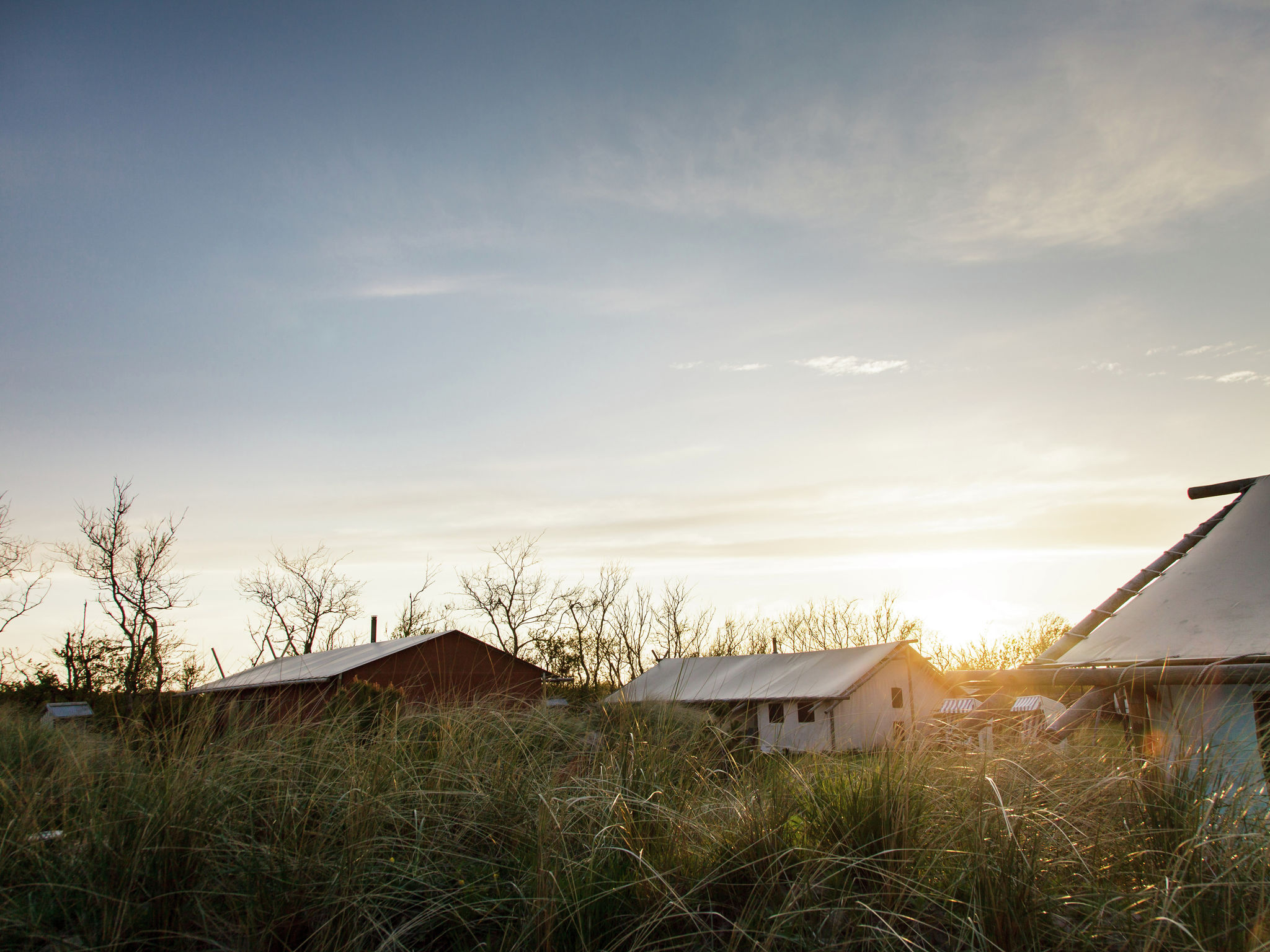 Holland | North Sea Coast North | Holiday home Duynpark Het Zwanenwater - Sea Lodge Callantsoog 6 | all year | ExteriorSummer