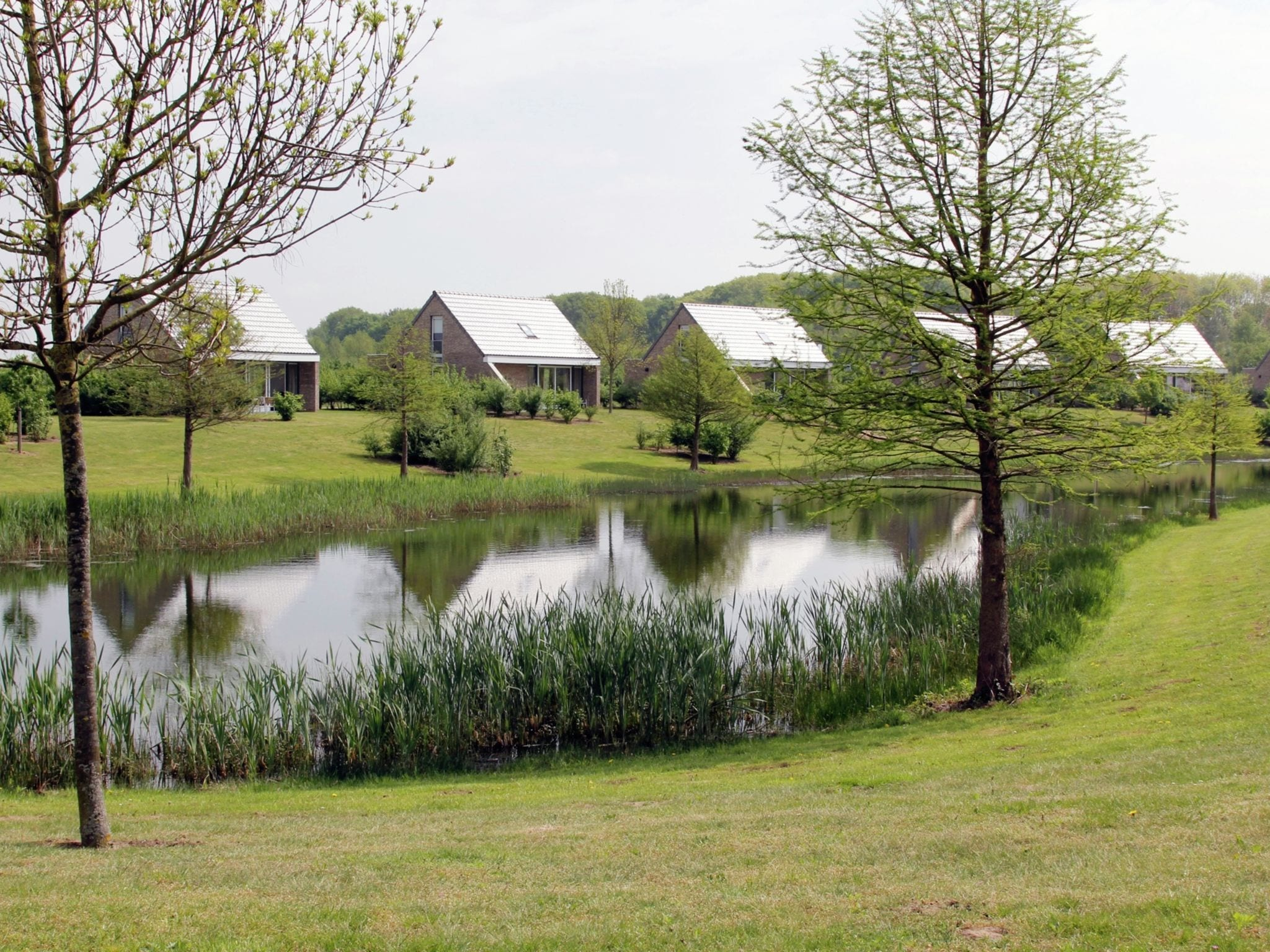 Holland | Limburg | Holiday home Maaspark Boschmolenplas - Vennenblik | all year | AreaSummer1KM