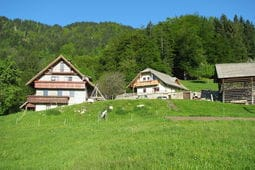 Appartement Tourist farm Pr Vazniku 4