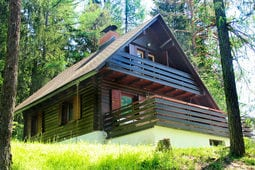 Lejlighed Počitniška hiša Gobela