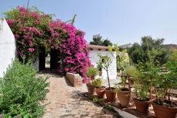 Casa Pippa