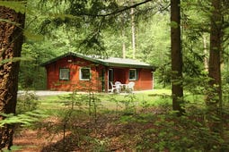 Vacation home Boskat - Landgoed Zelle