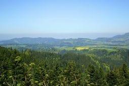 Omgeving zomer 20km Schwarzwaldhaus Pferdeklause