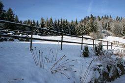 Winter aanzicht Schwarzwaldhaus Pferdeklause