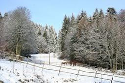 Omgeving winter 1km Schwarzwaldhaus Pferdeklause