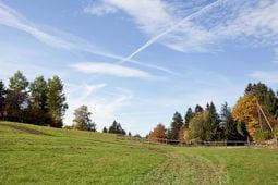 Omgeving zomer 5km Schwarzwaldhaus Pferdeklause
