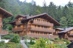 Vacation home Grindelwald 11
