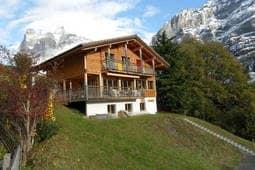 Apartment Grindelwald 23